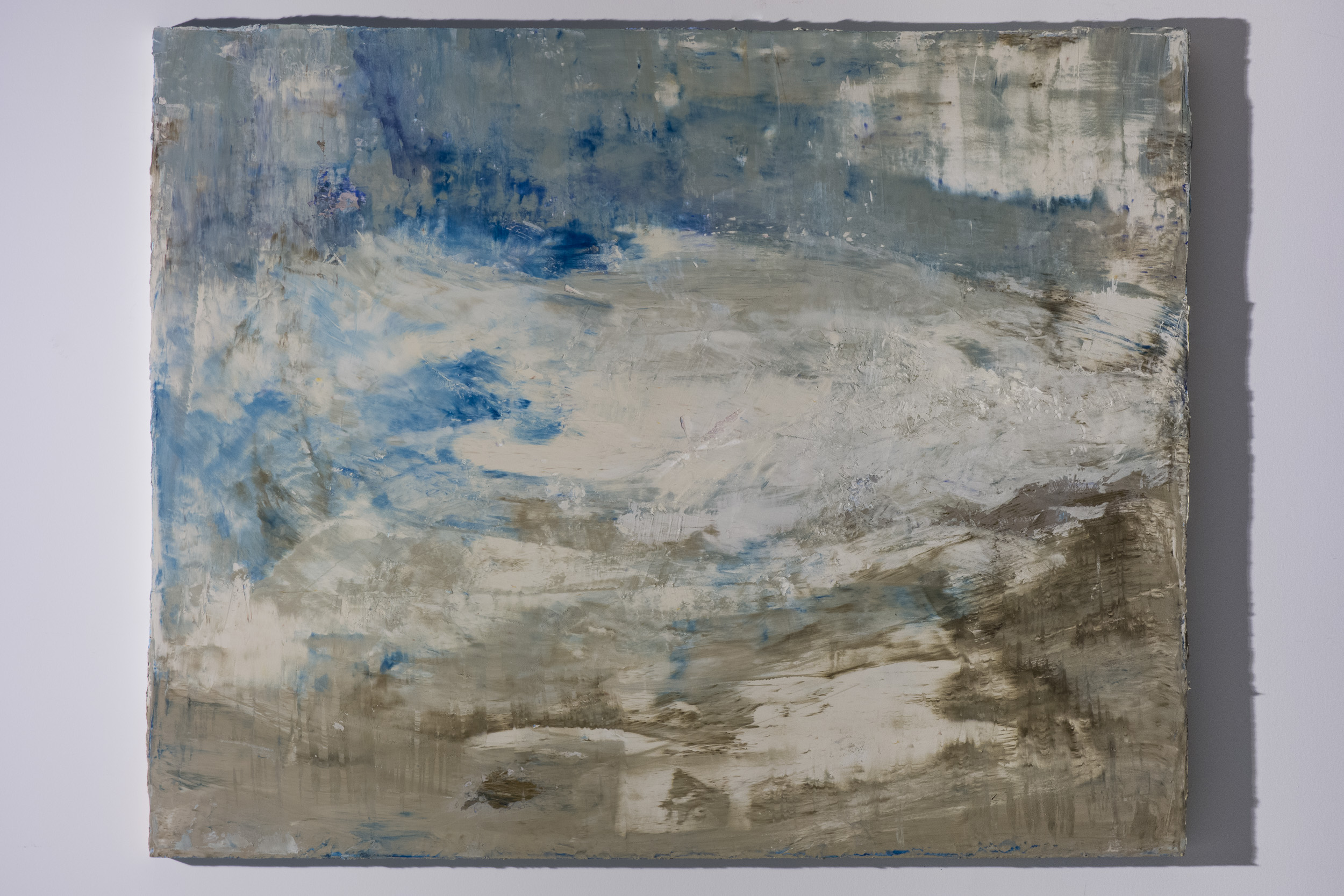 Shelley Vanderbyl - Pareidolia 1 (Side Light) - 2016 - Fresco on Panel - 48x60.jpg