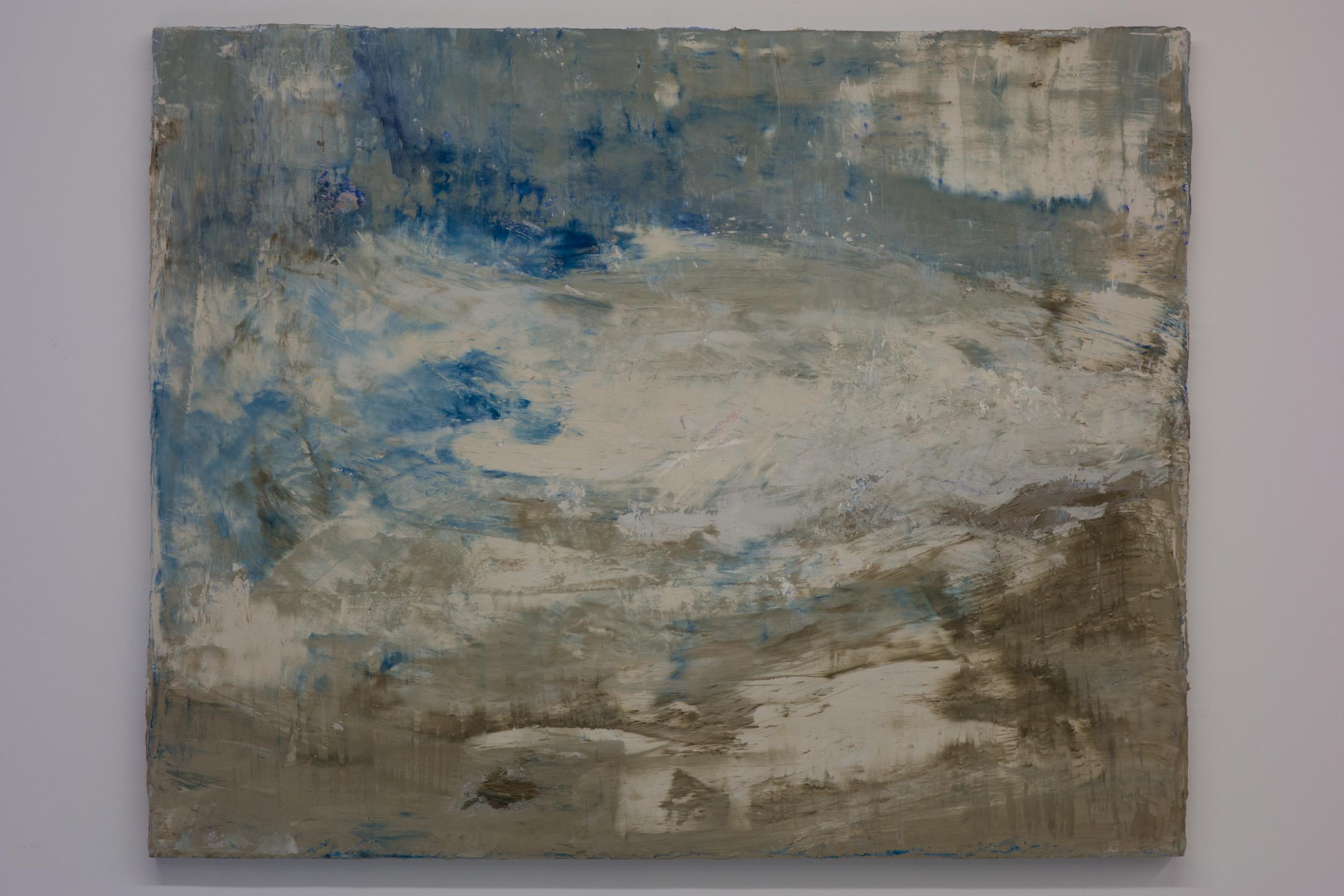 Shelley Vanderbyl - Pareidolia 1 - 2016 - Fresco on Panel - 48x60.jpg