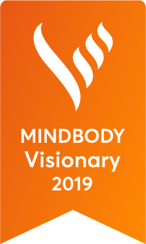 Visionary 2019 award.png