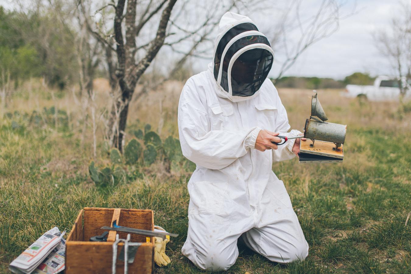 gl-bees-snakes-7435.jpg