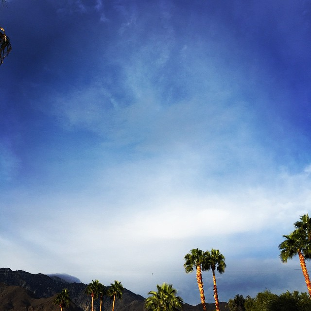 Beautiful morning in Palm Springs, taken by our marketing guru Heather McCallum,who snapped this during her morning training run. She'straining for a marathon in March!