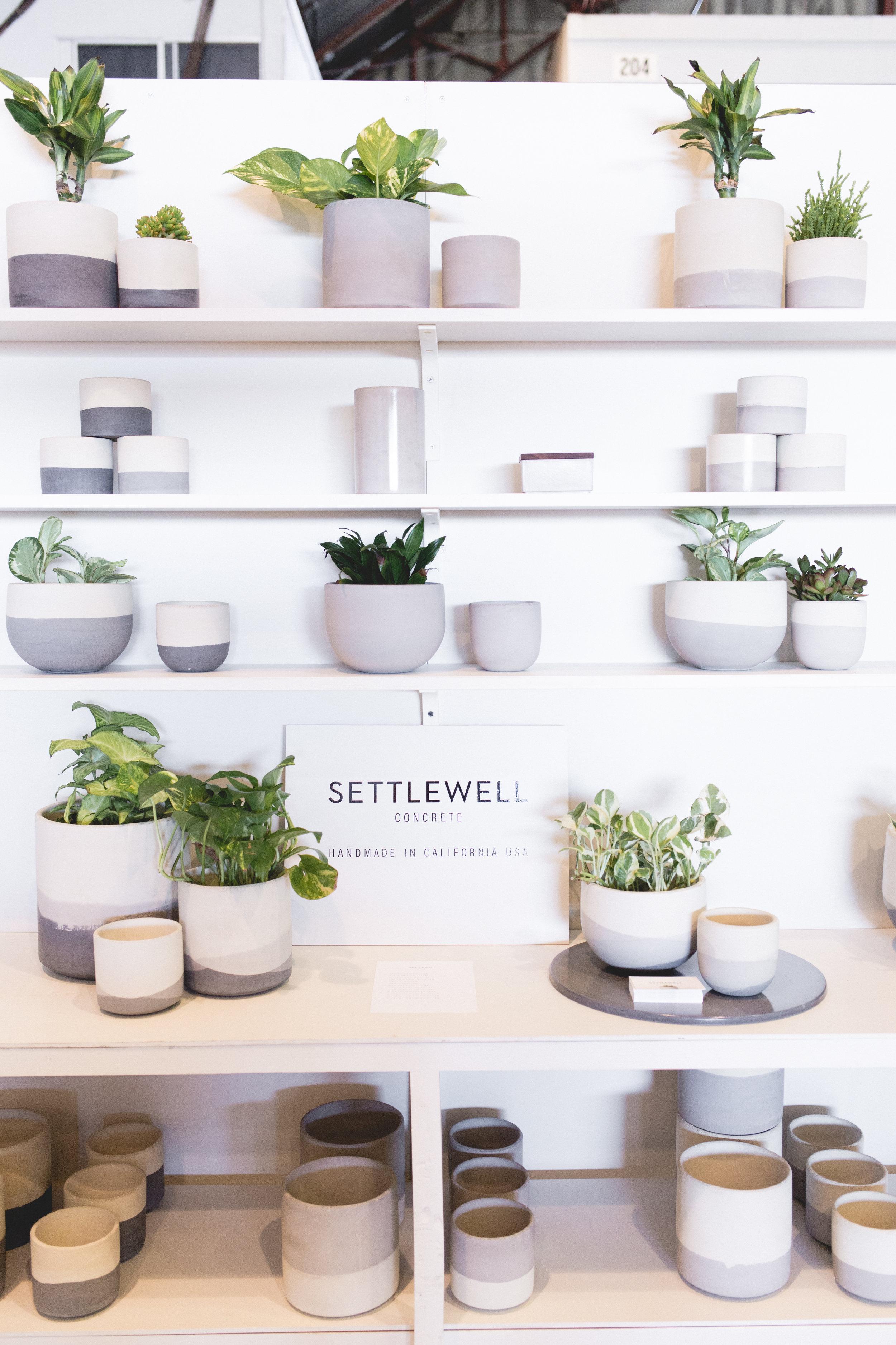 settlewell.jpg