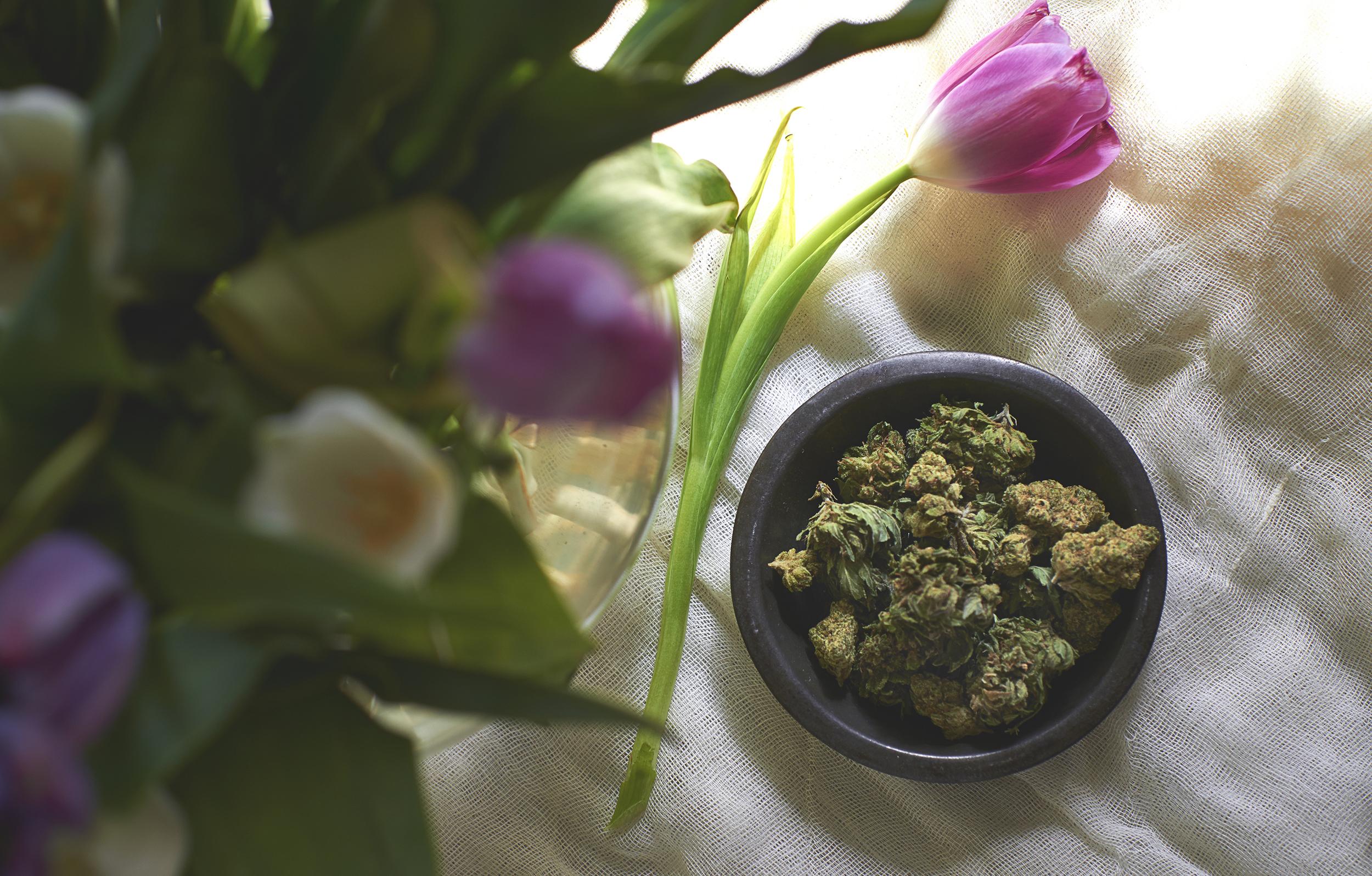 Spring_stillLife.jpg