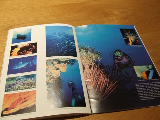 There's me on the right and left scuba diving and modeling for a travel brochure on Pohnpei, Micronesia! Crazy stuff I know... but this was just the beginning... I went on to Sri Lanka and South America!
