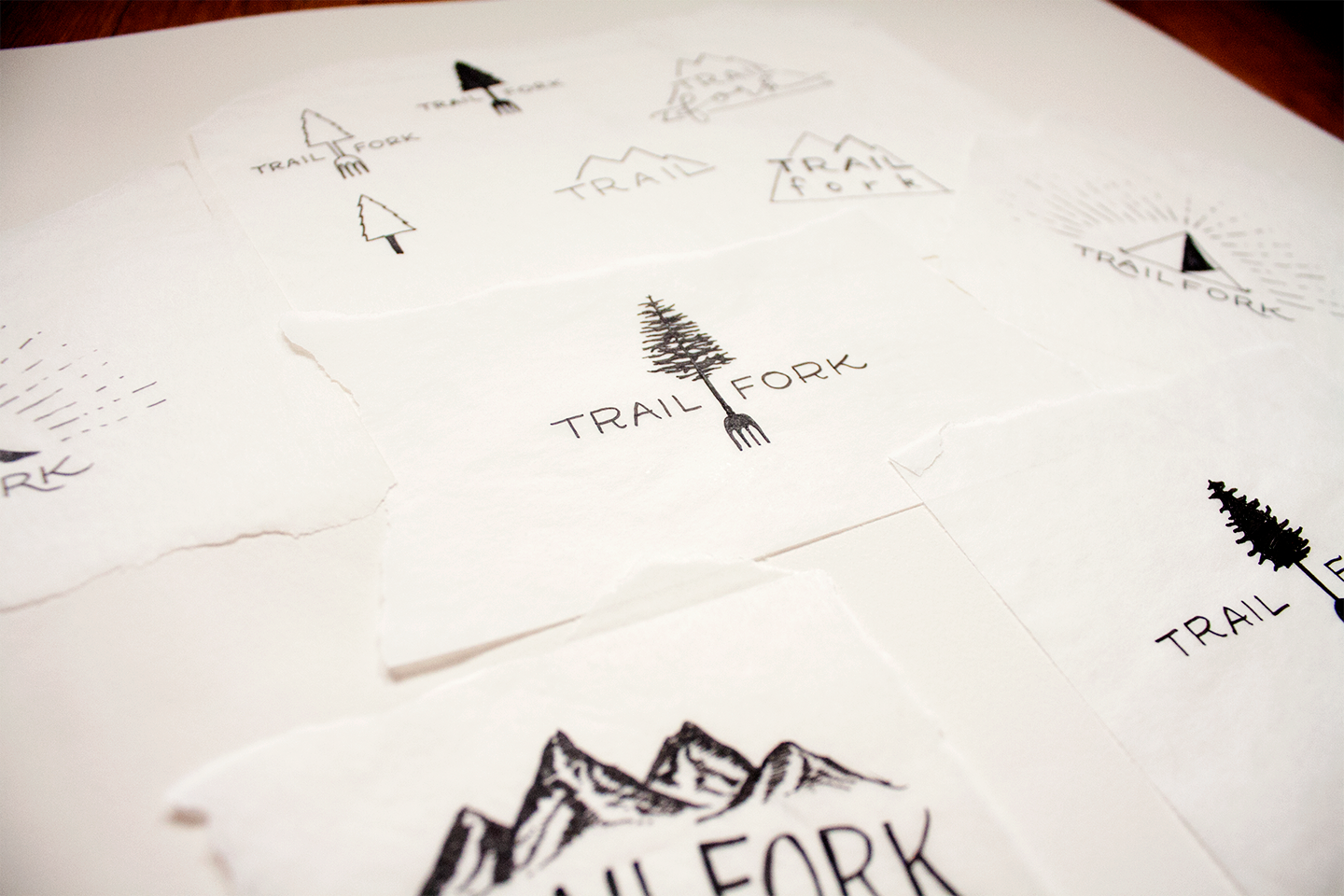 CHC-trailfork-logo-sketches.png