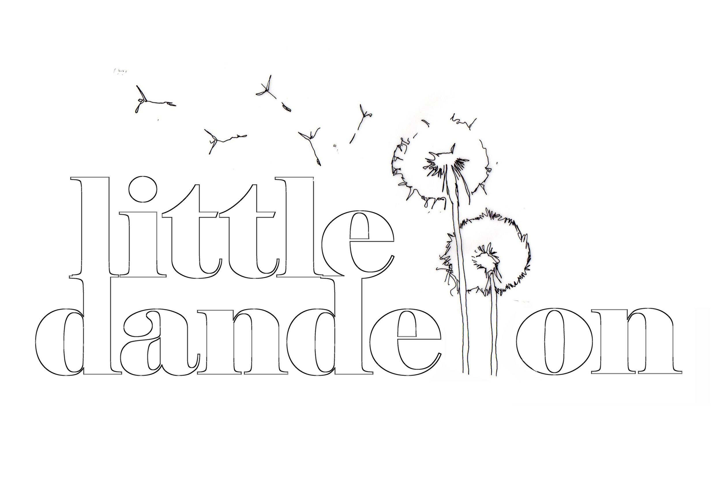 Little dandelion sketch - Photo by Zac Mead