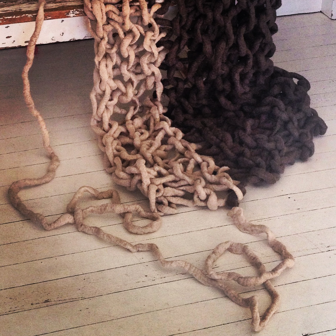 Bicolour woollie.jpg