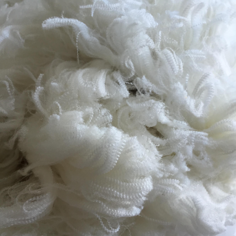 Crimp of wool Eric's pic.jpg