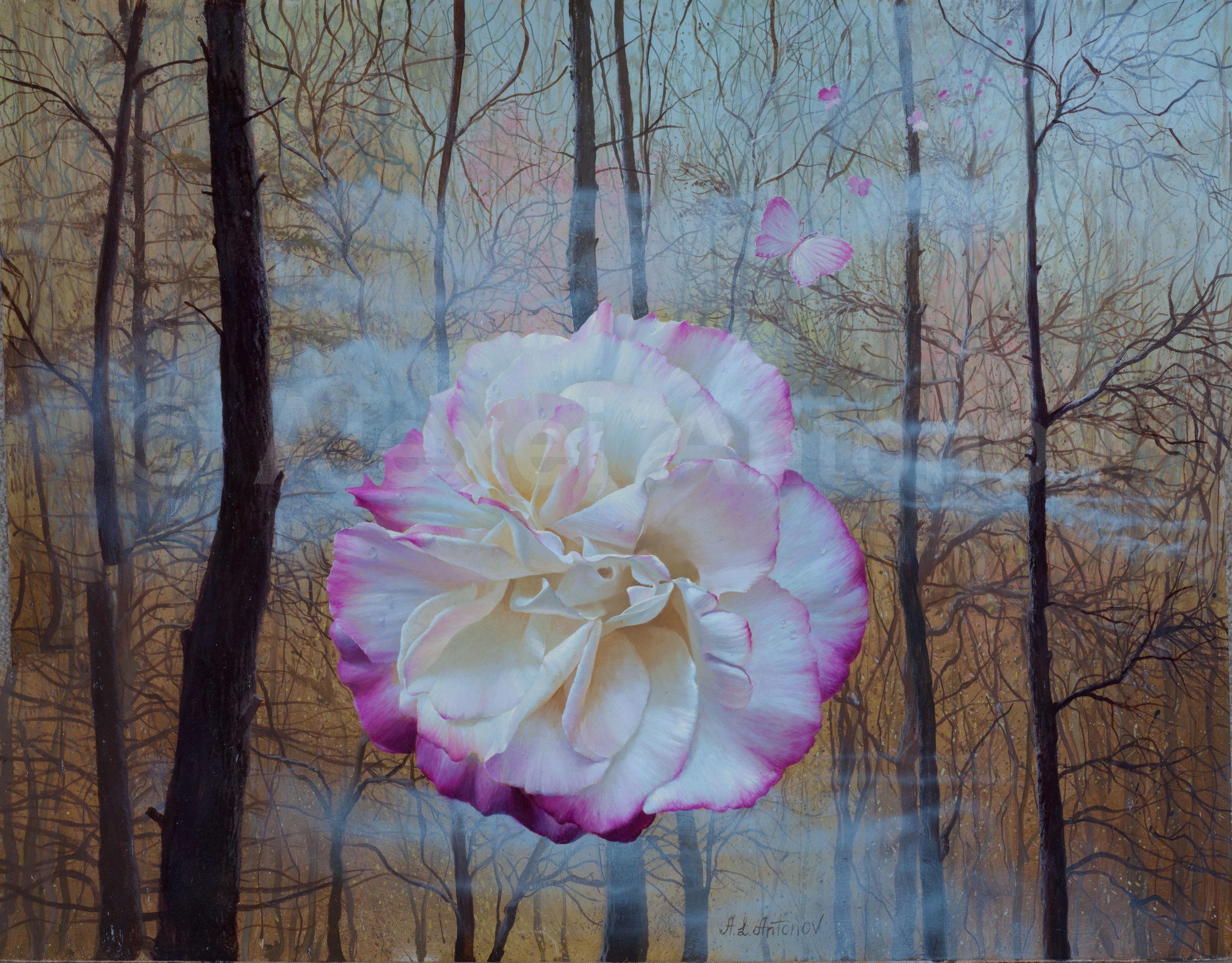 roza-v-lesu.jpg
