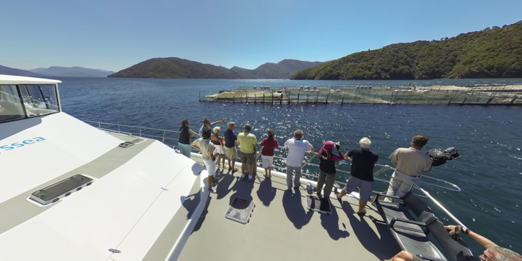 Viewing the Fish Farm