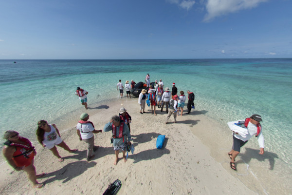 Passengers arriving at the reef