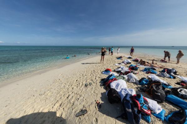 Snorkelling & swimmingat the reef