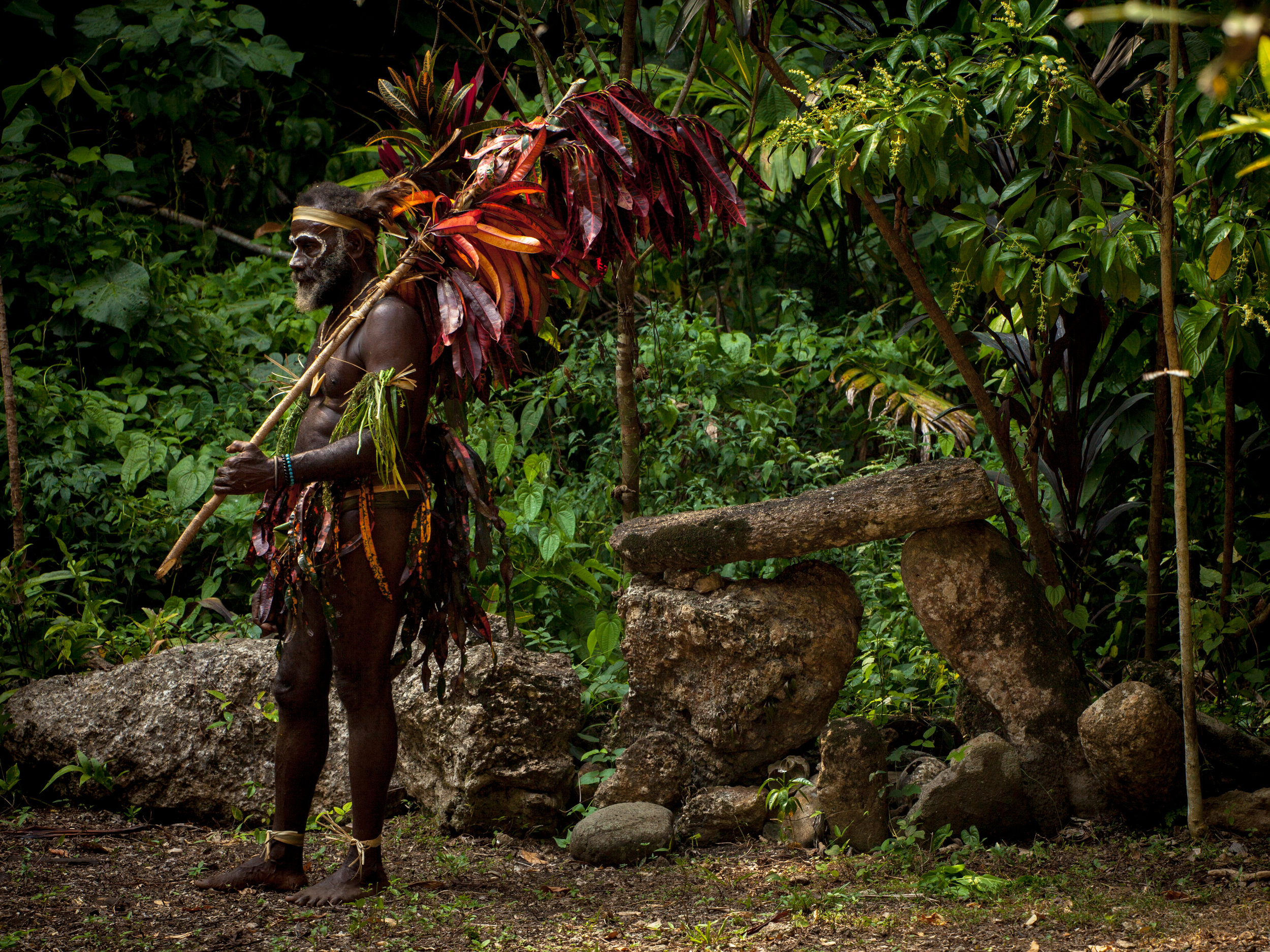 Malakula Dancer in Jungle