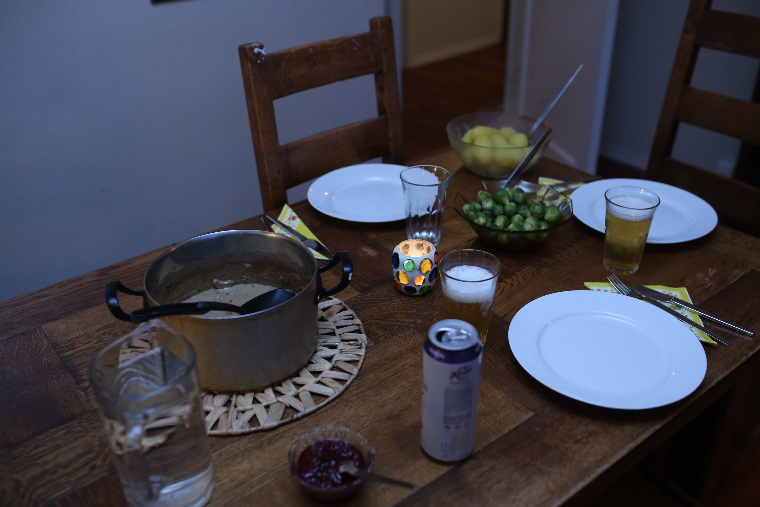 that morning, I had asked our hostess Terese if she could make a traditional Norwegian dish. She went with Reindeer stew, potatoes, brussel sprouts and lingonberry jam. We supplied the beer and dessert! Thank you Terese--it was nice to sit and talk with her. She was so down to earth and friendly. Roey and I really enjoyed talking about politics and culture with her. She was a gem.