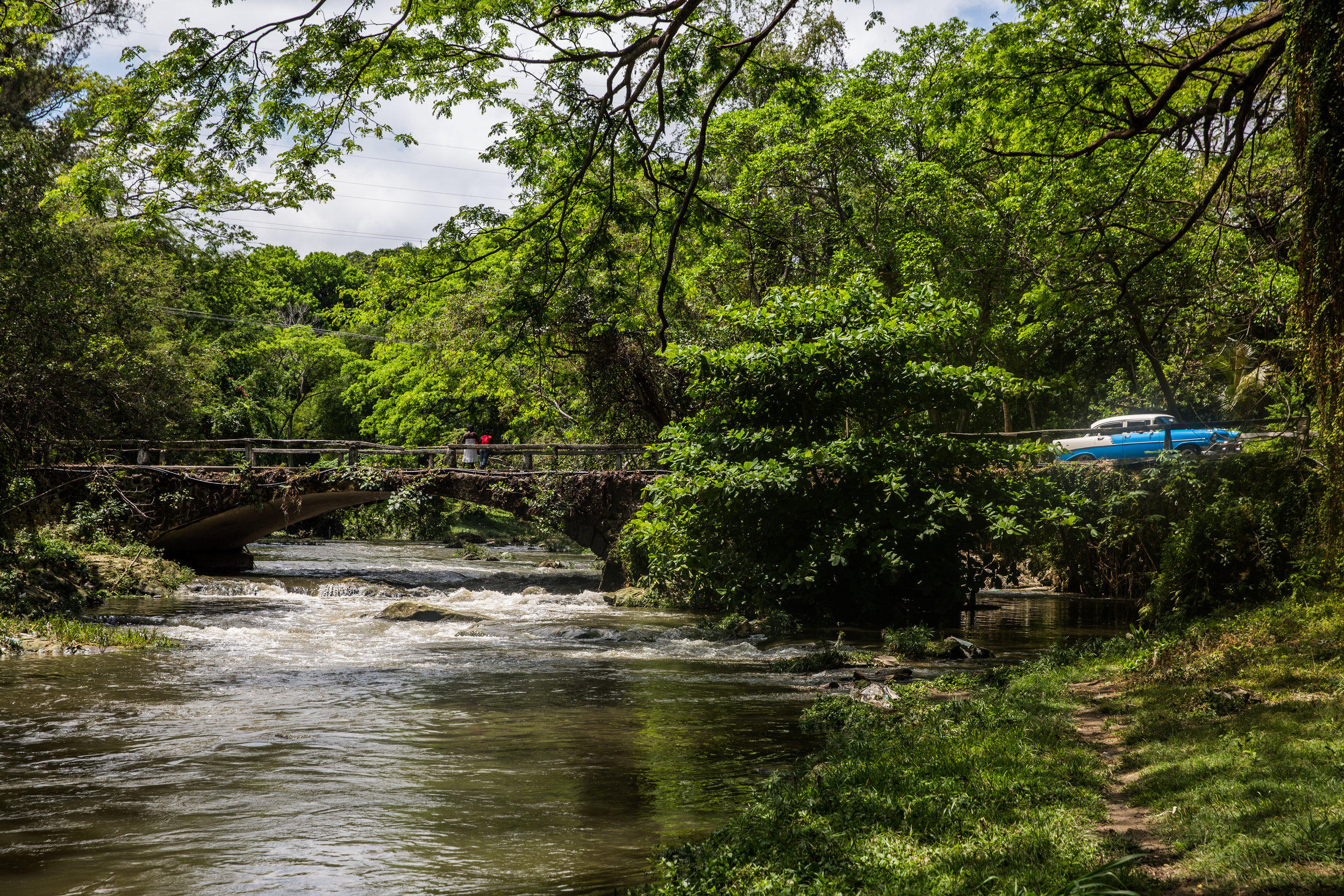 Jungles push up against Havana's city limits; a lush green nearly year round.