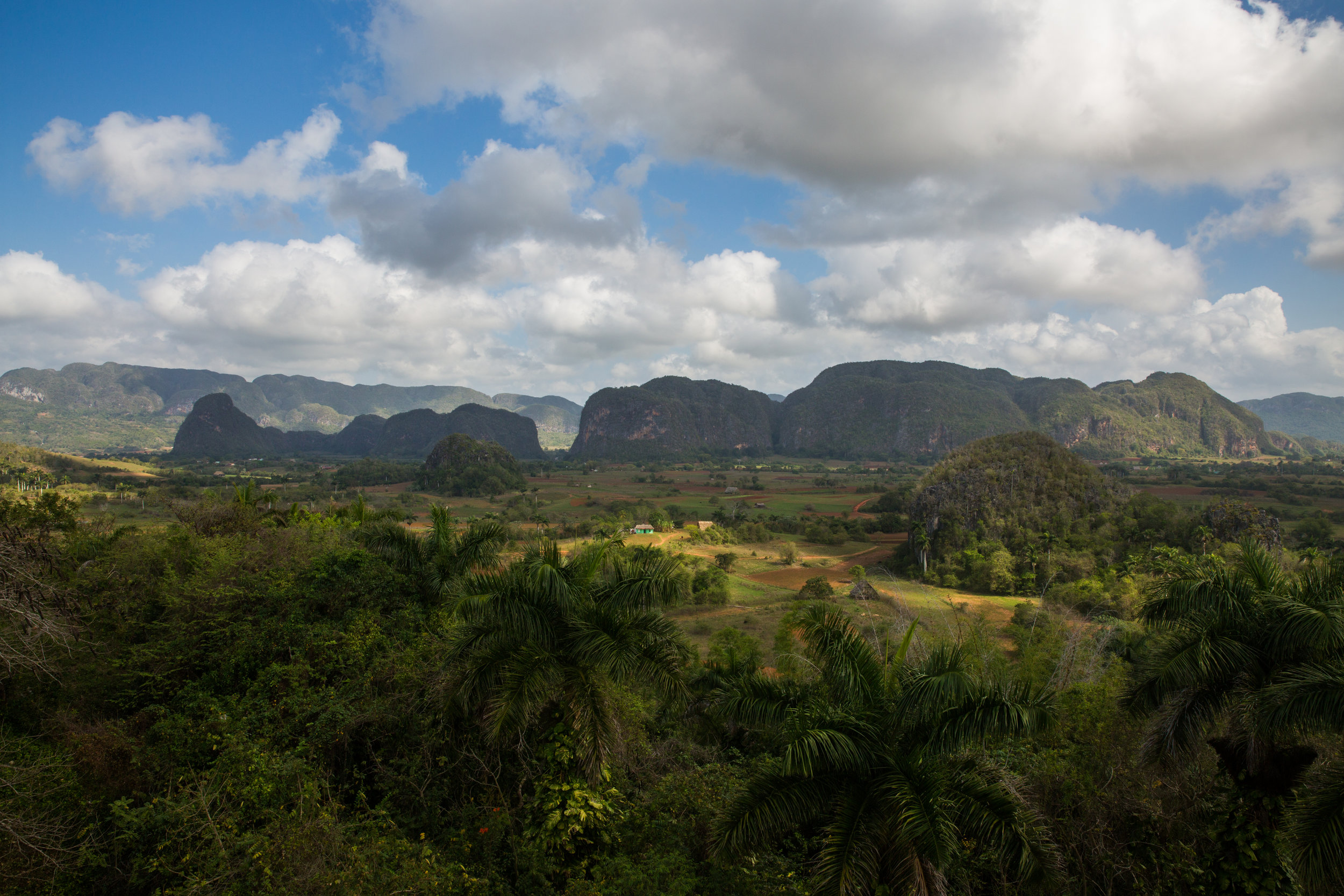 What most people will tell you is the most impressive scene in Cuba: Valley de Viñales. Limestone cliffs called mogotes raise from the floor of the tobacco farms of the basin.