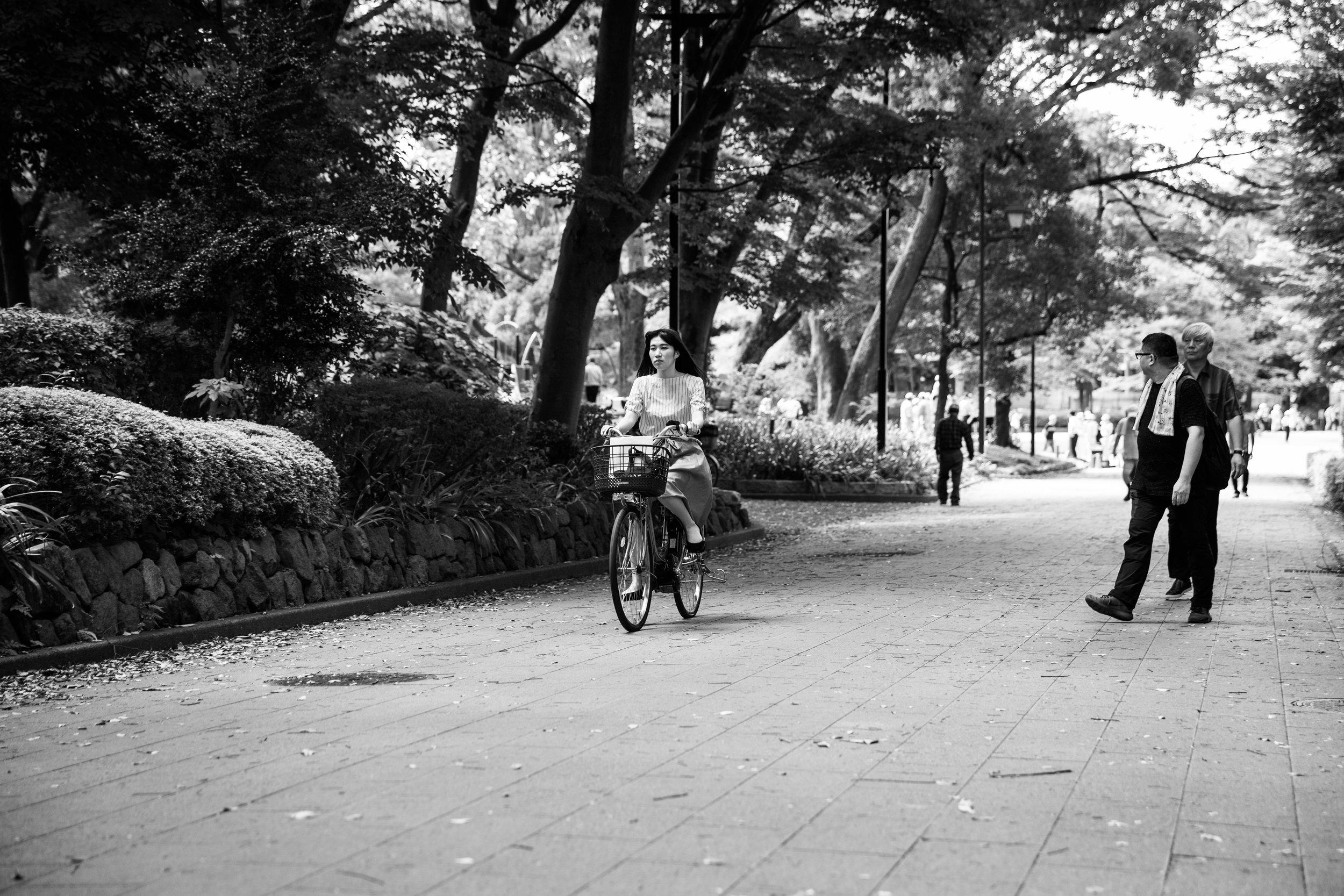 Crusing through Ueno Park.