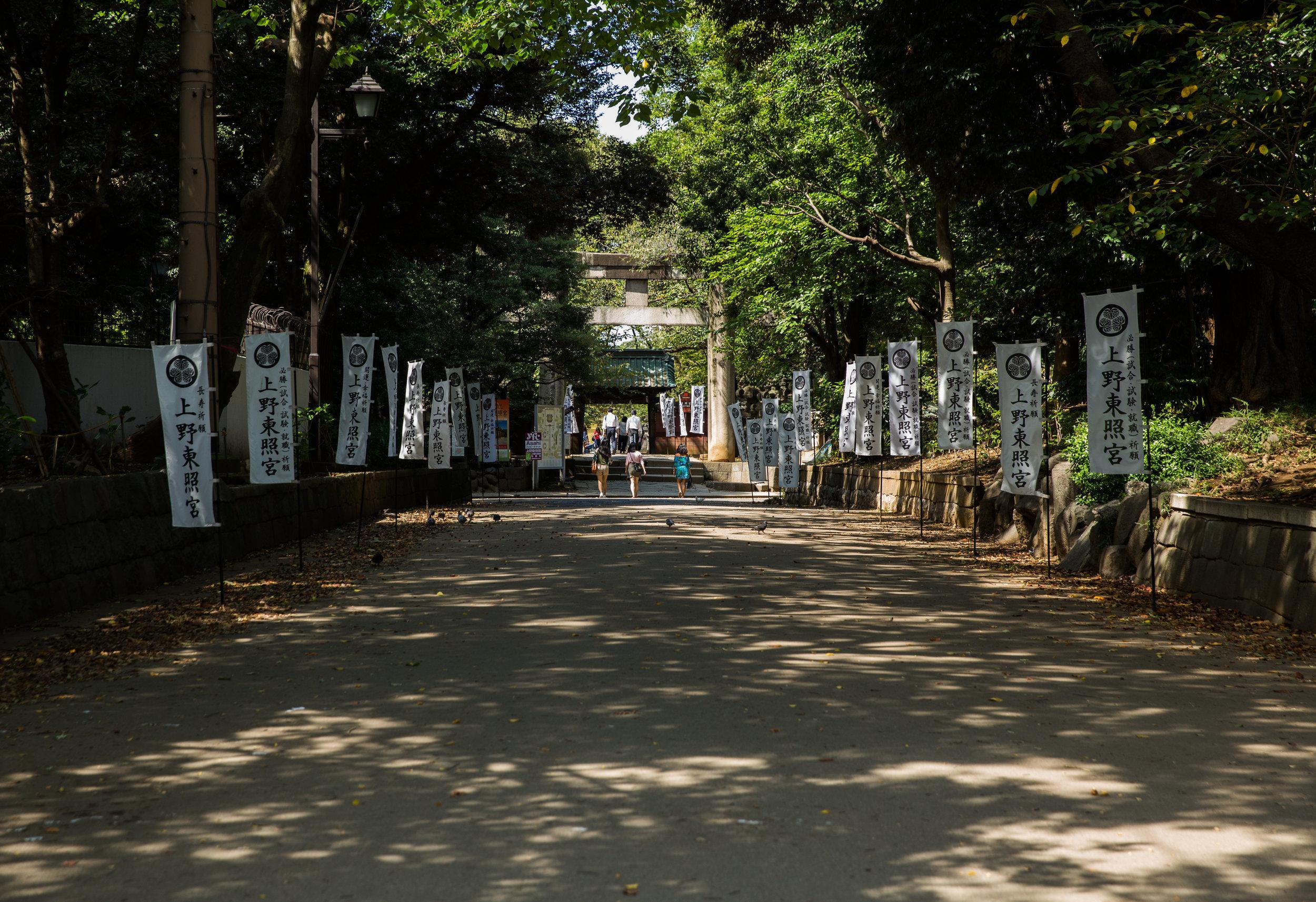 Exploring Onshi Park