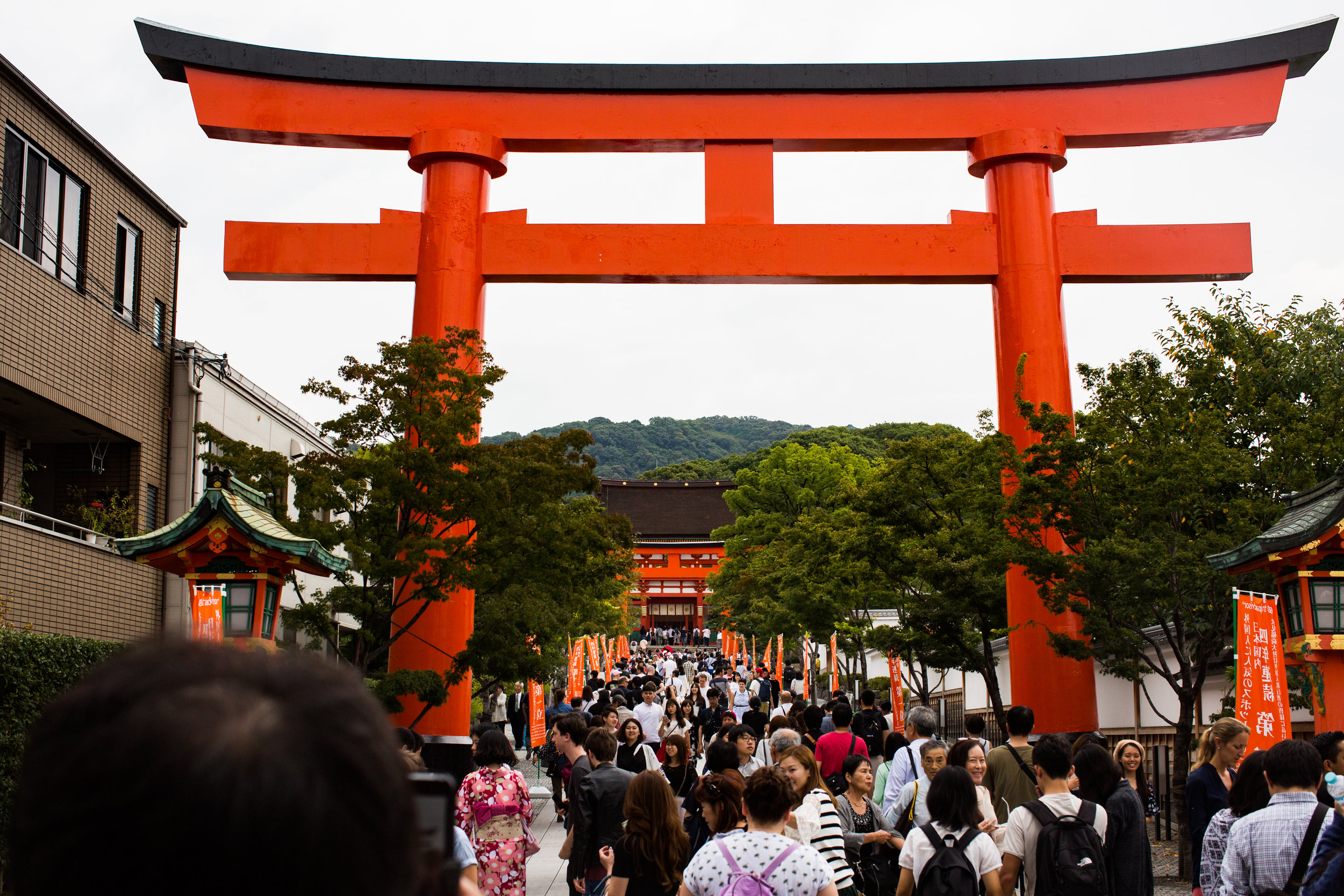 While the Fushimi Inari Shrine is a must see, you'd best get there around 7am if you intend on getting that perfect solo shot. We were more dedicated to sleep.
