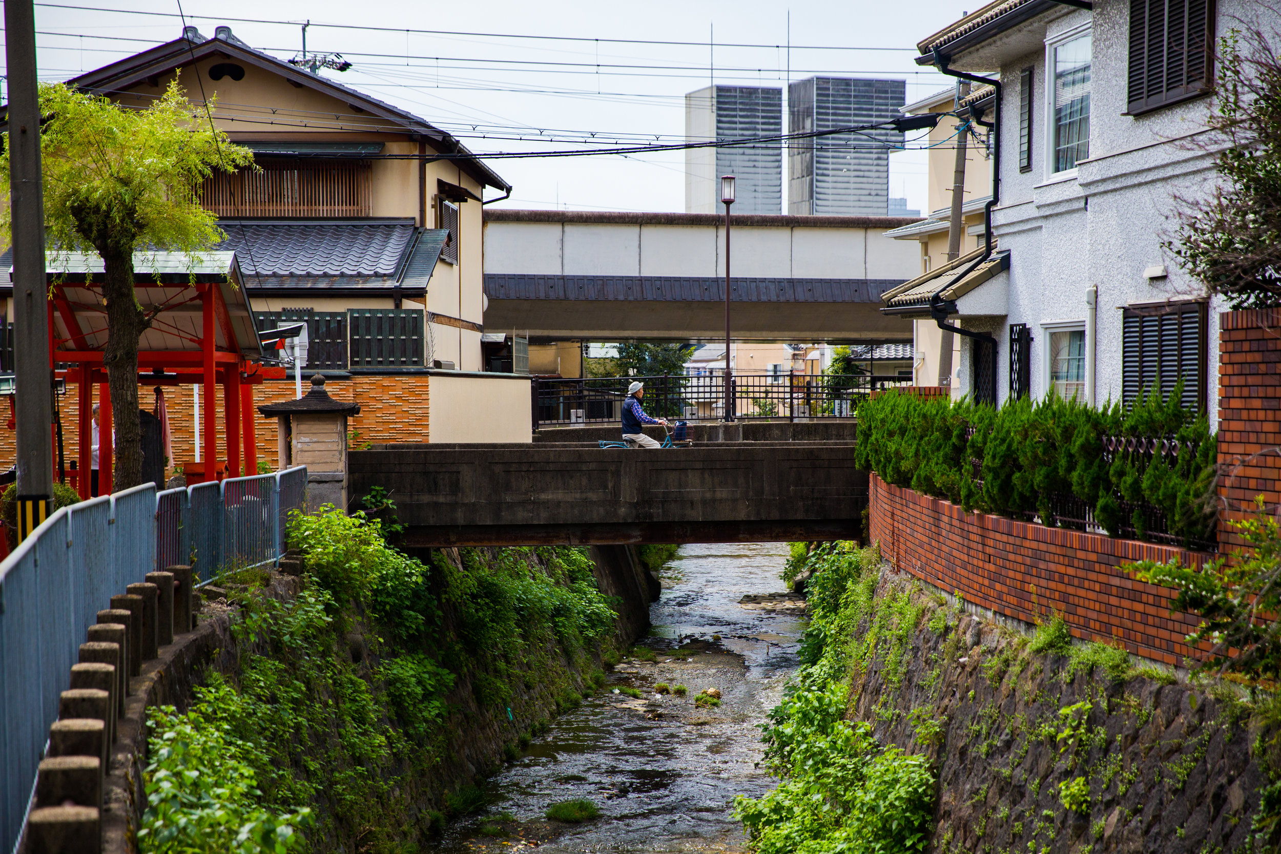 Kyoto's streets wind around shines built hundreds ago in a harmonious manner.