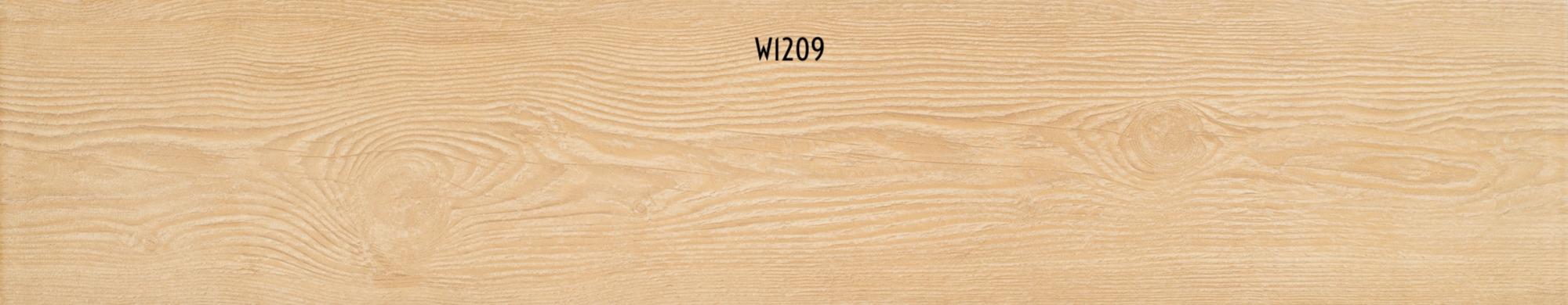 W1209