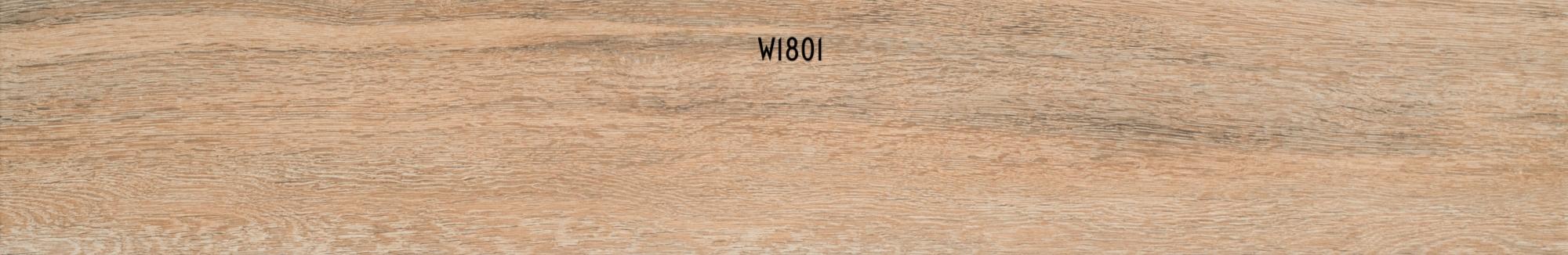 W1801
