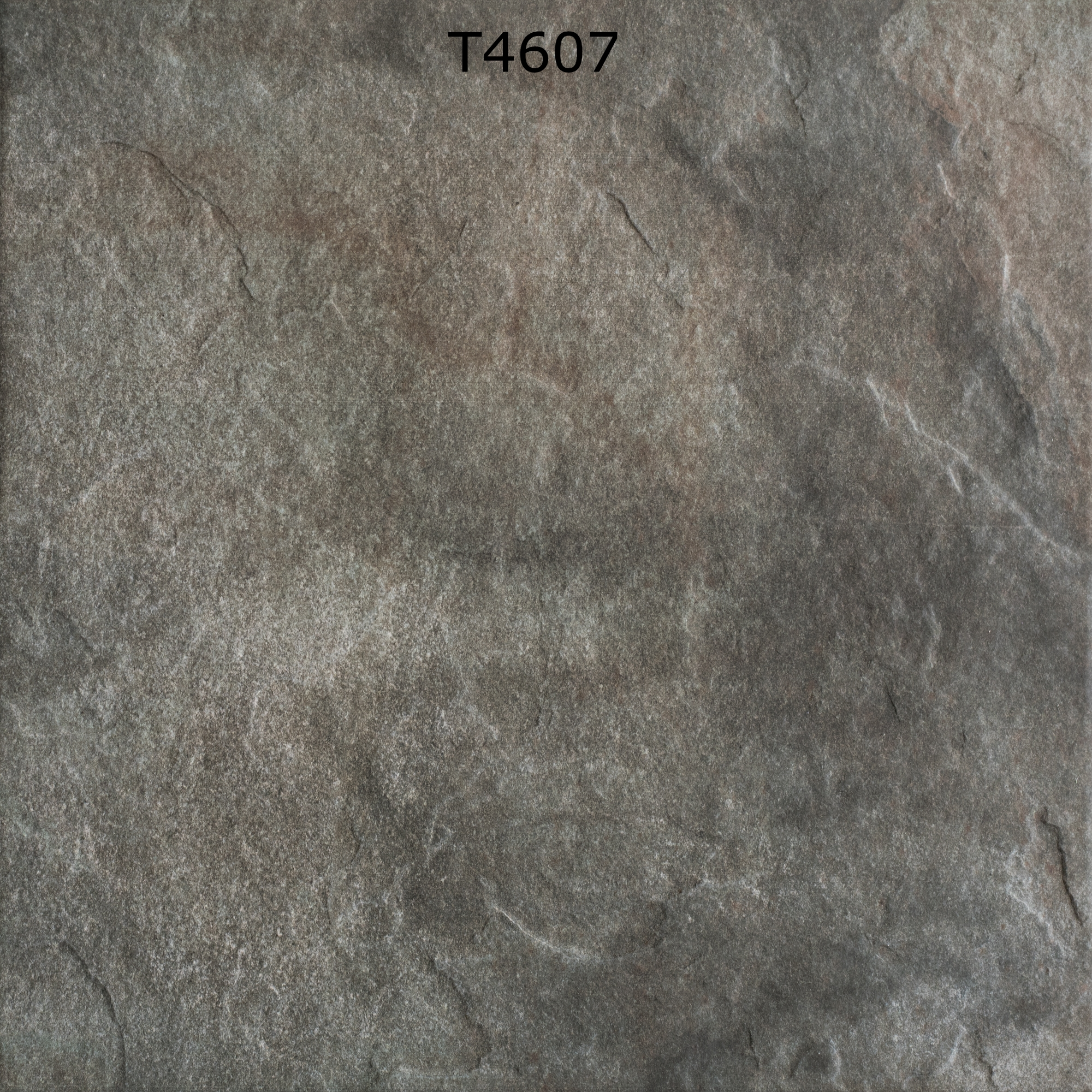 T4607