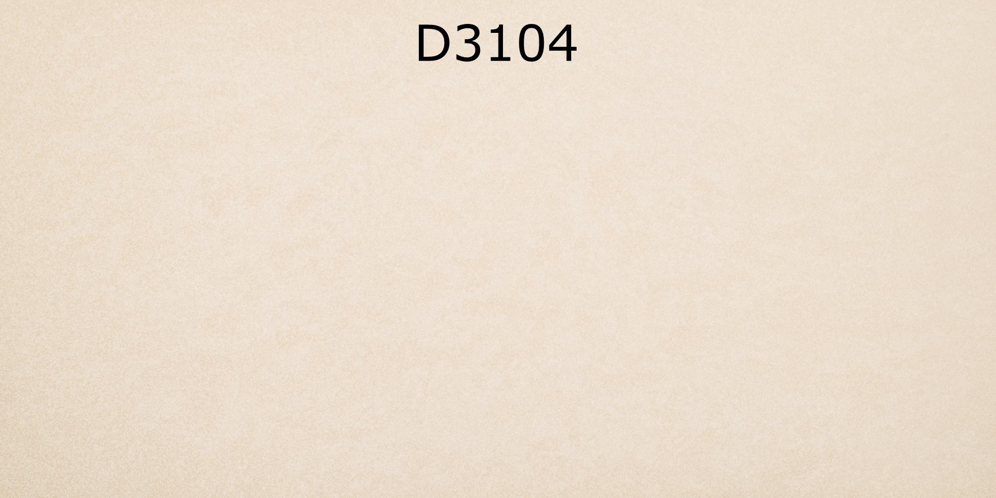 D3104