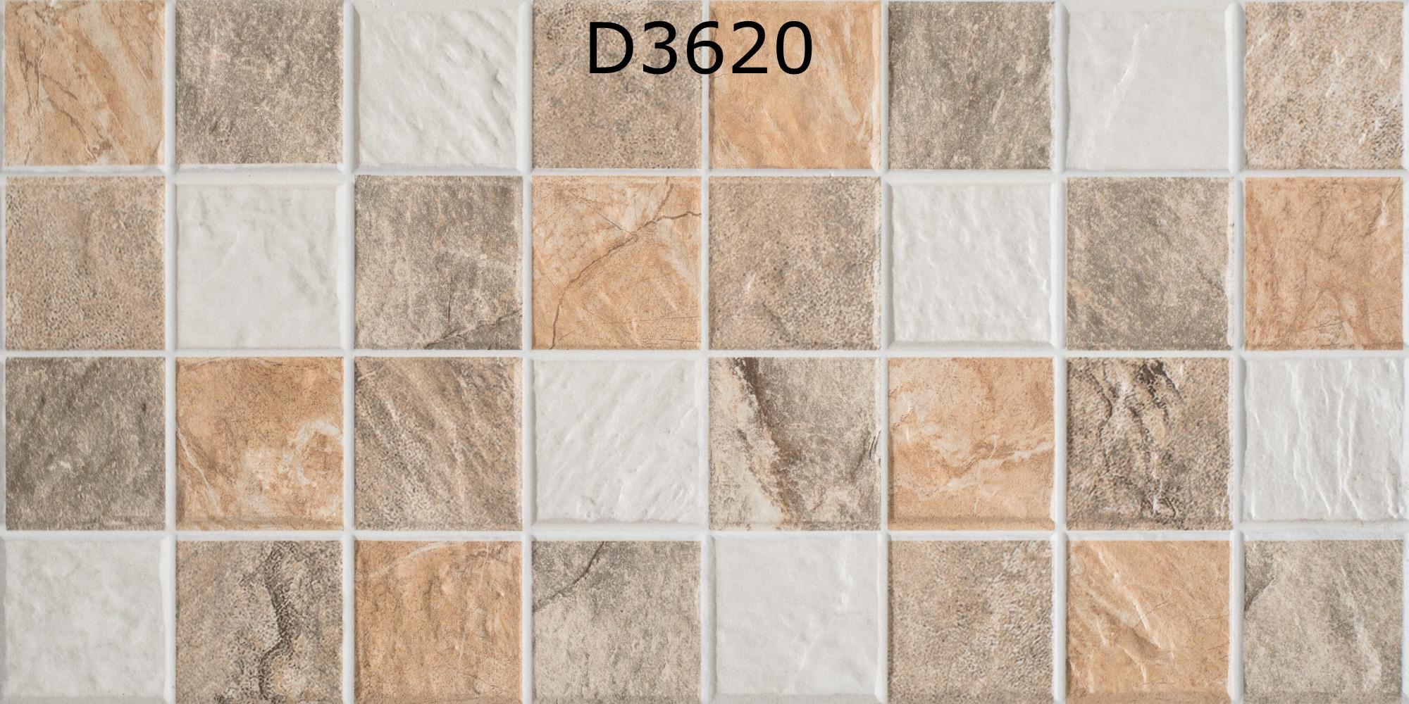D3620