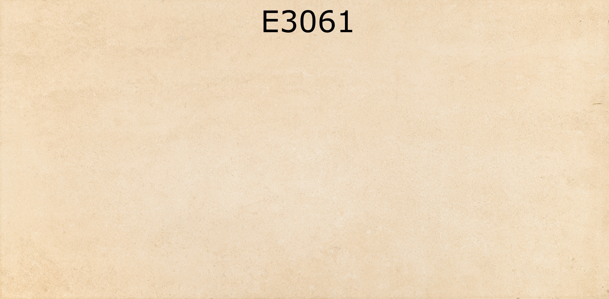 E3061
