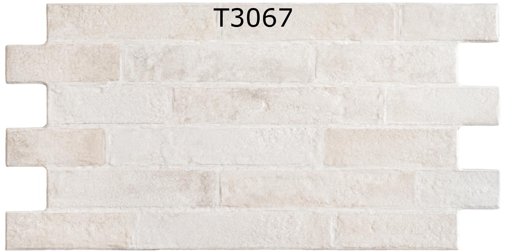 T3067