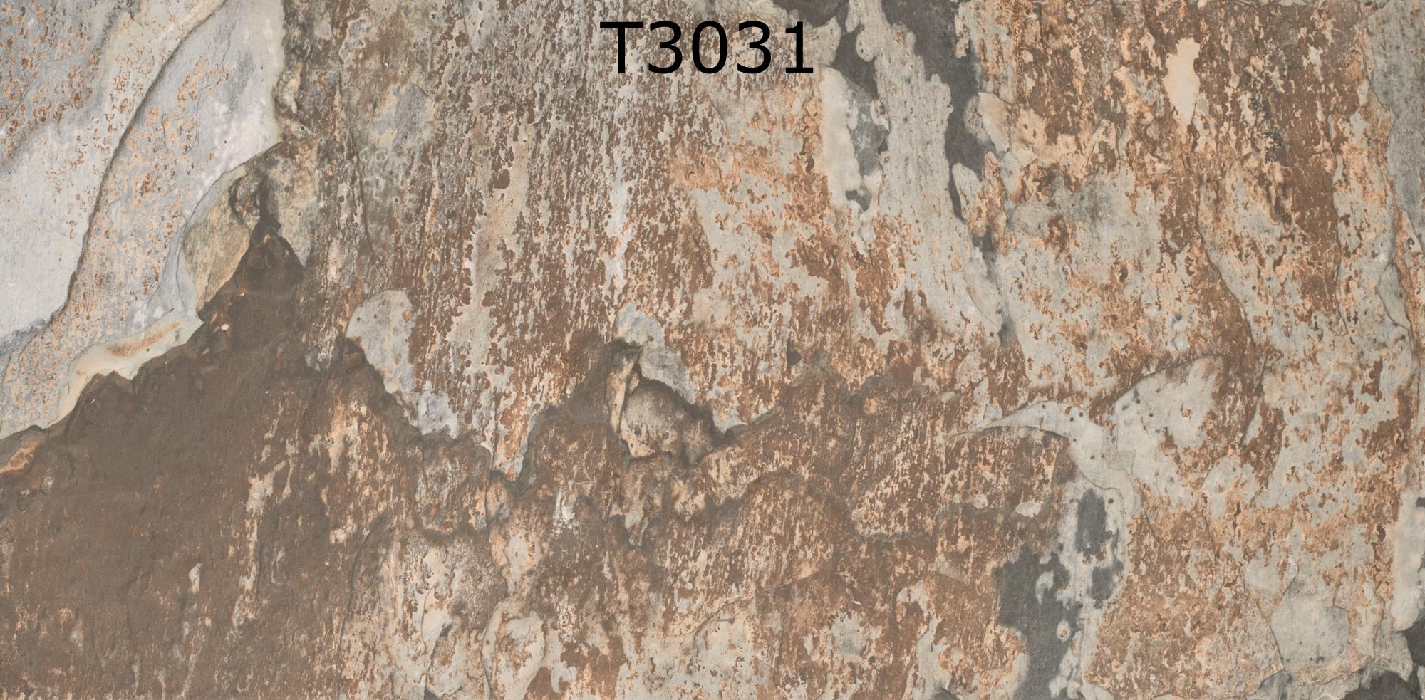 T3031
