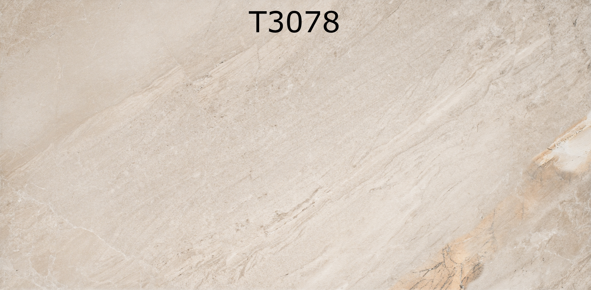 T3078
