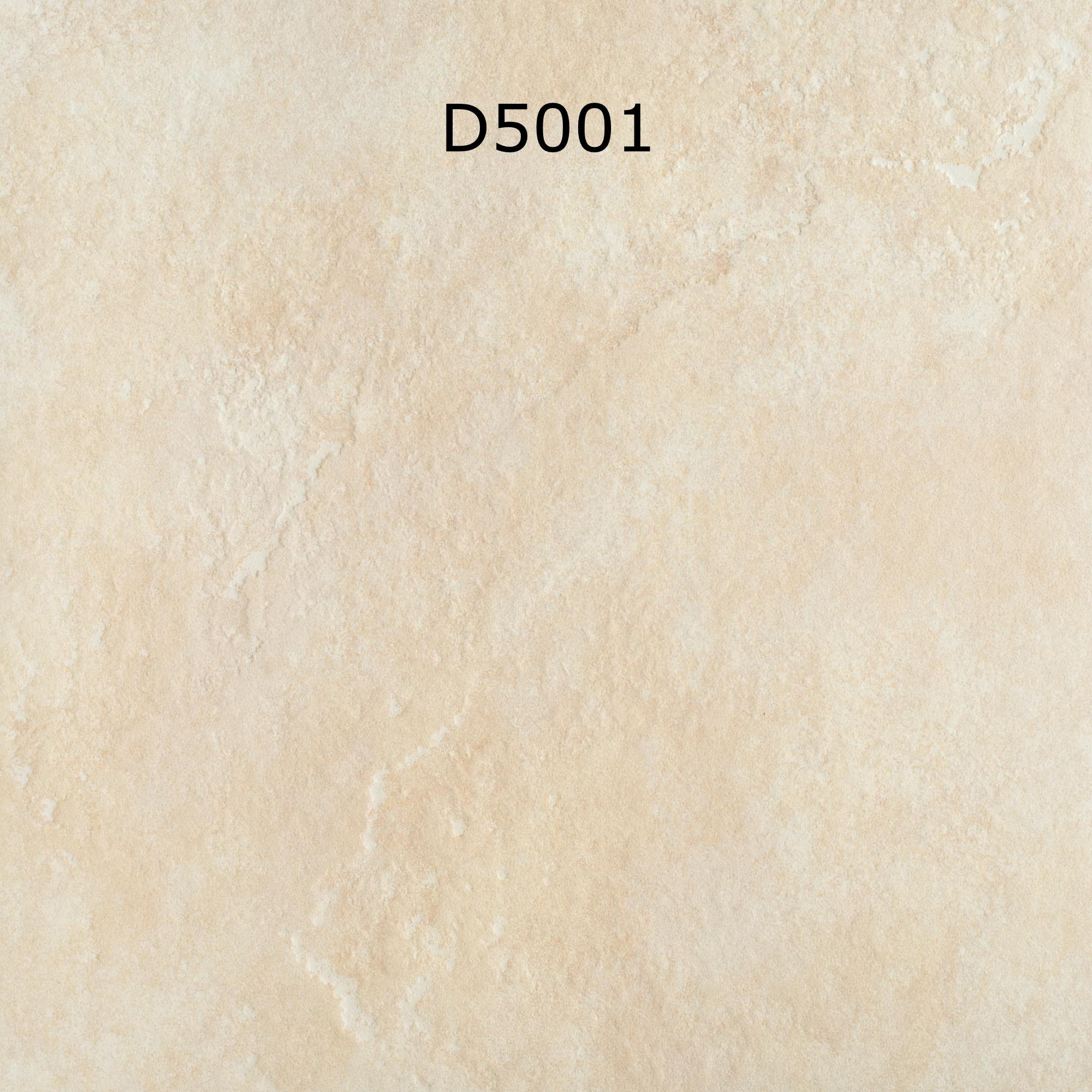 D5001