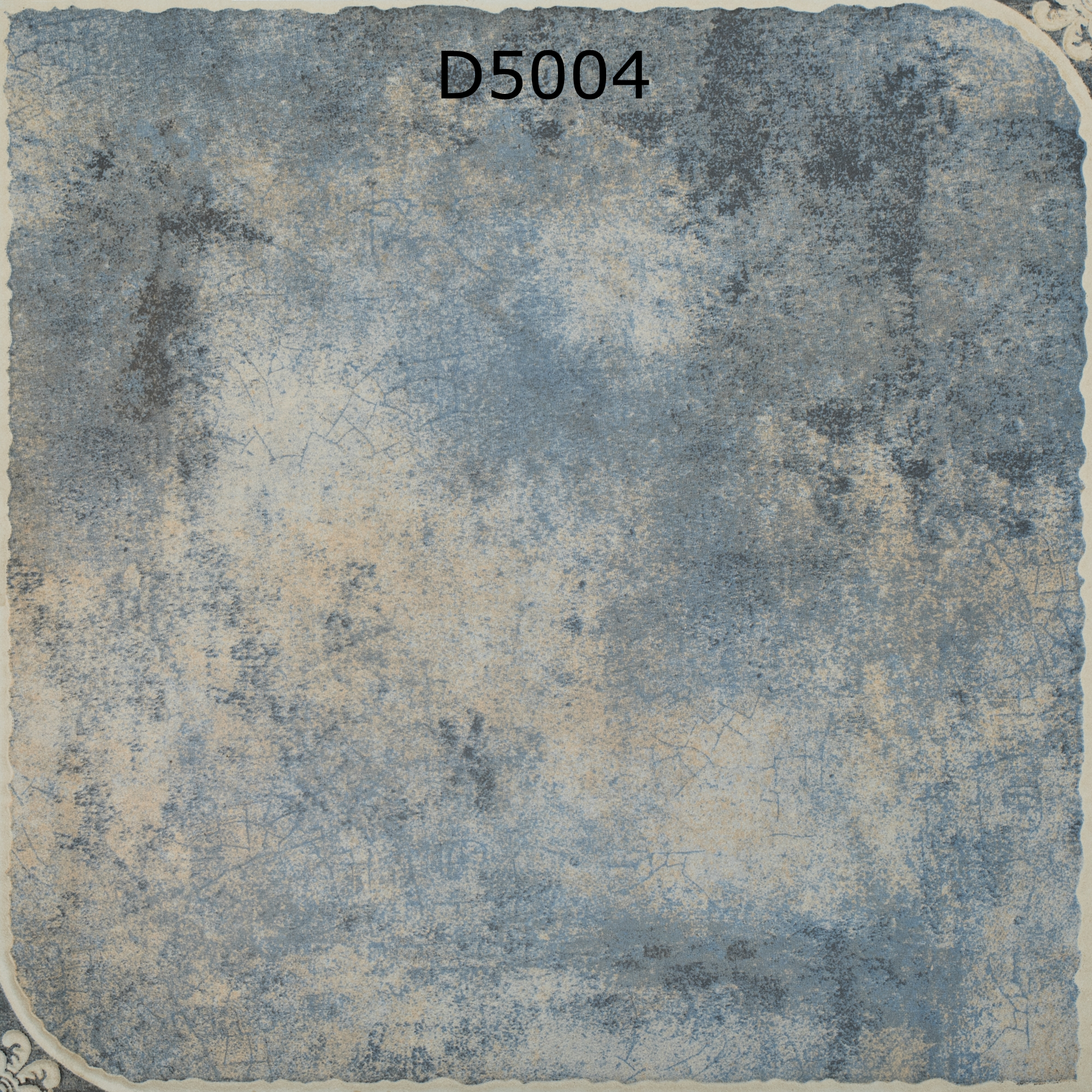 D5004