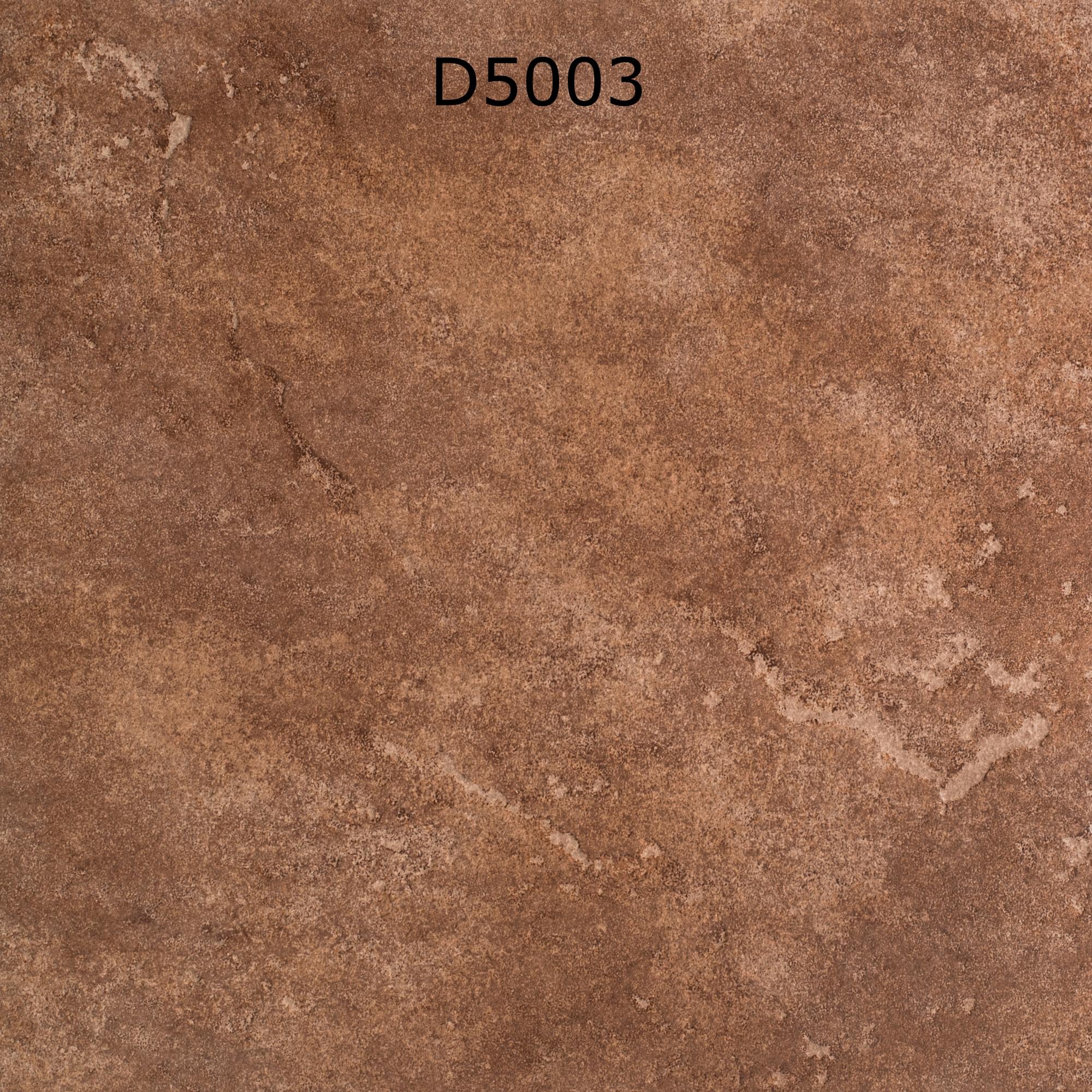 D5003