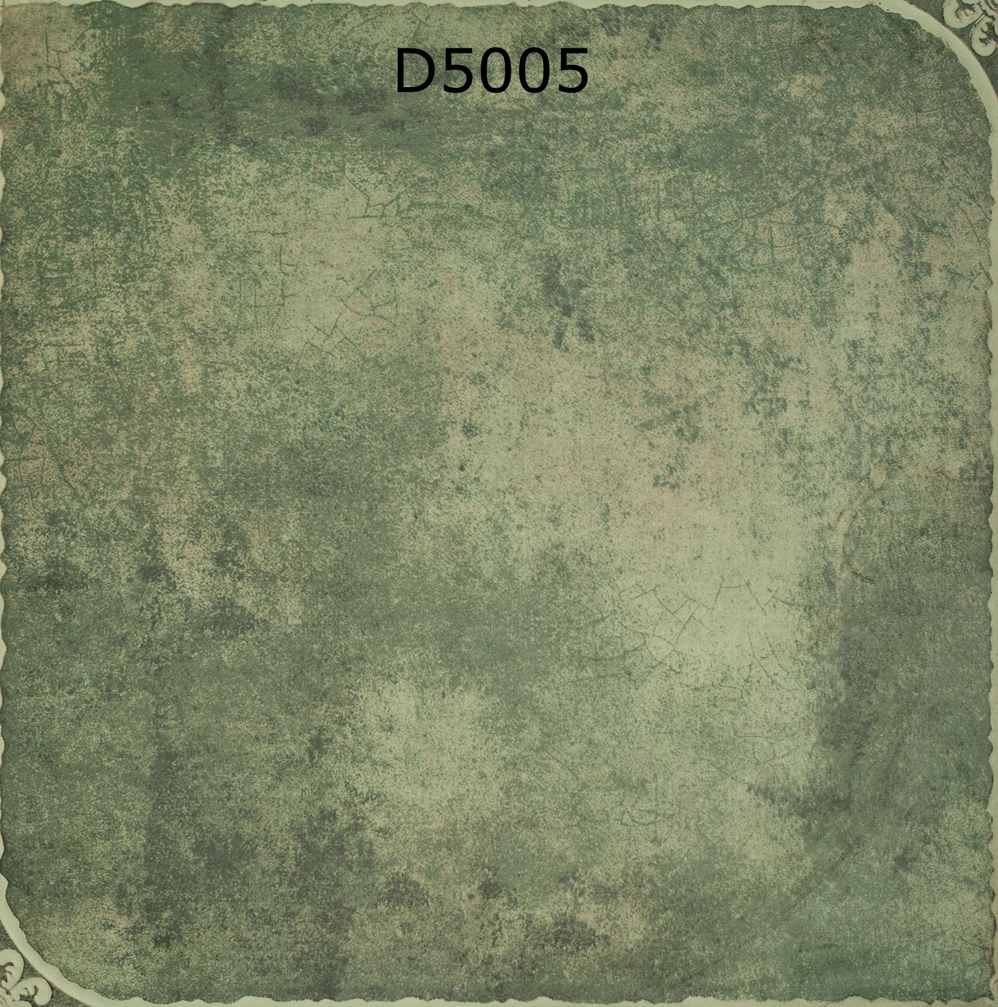 D5005