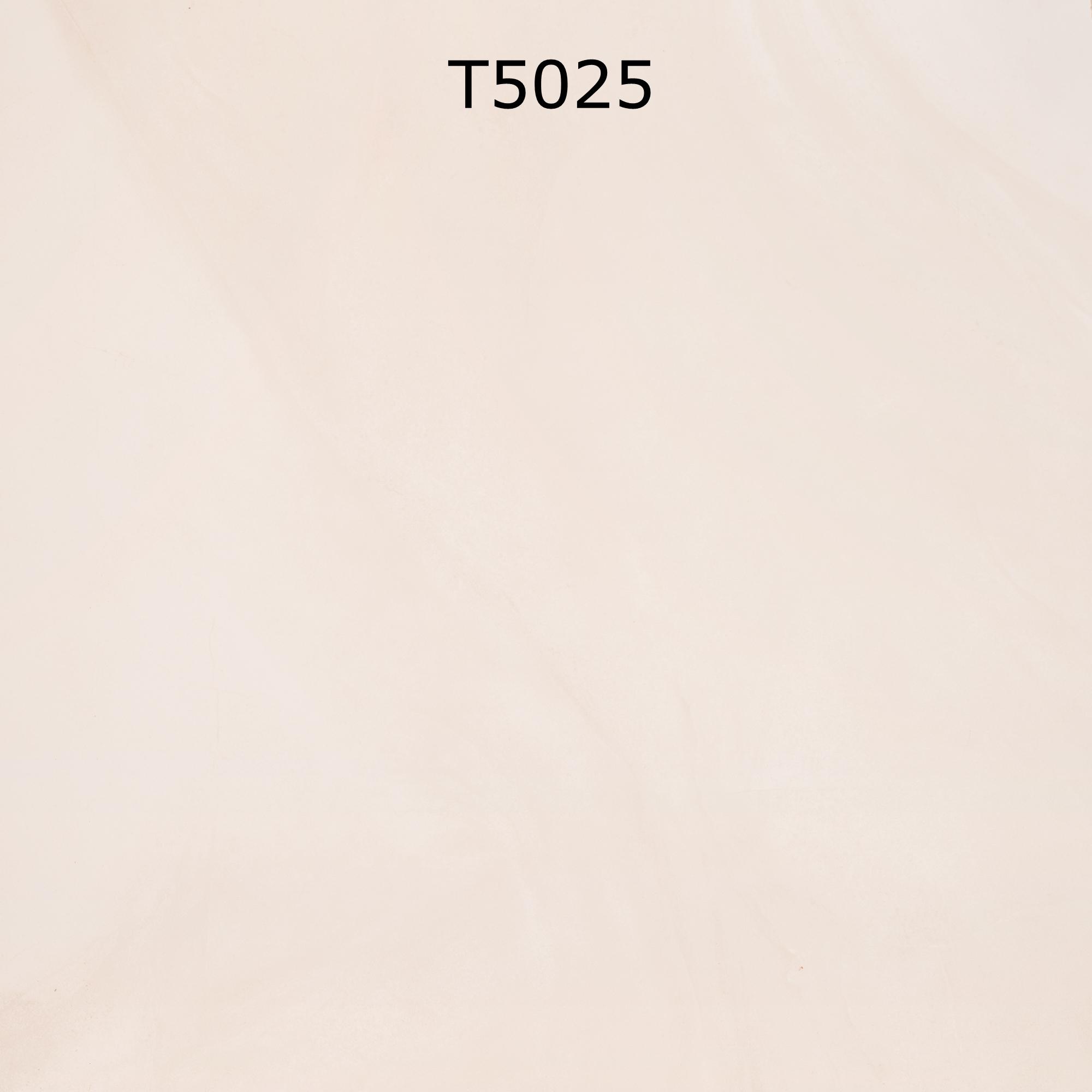 T5025