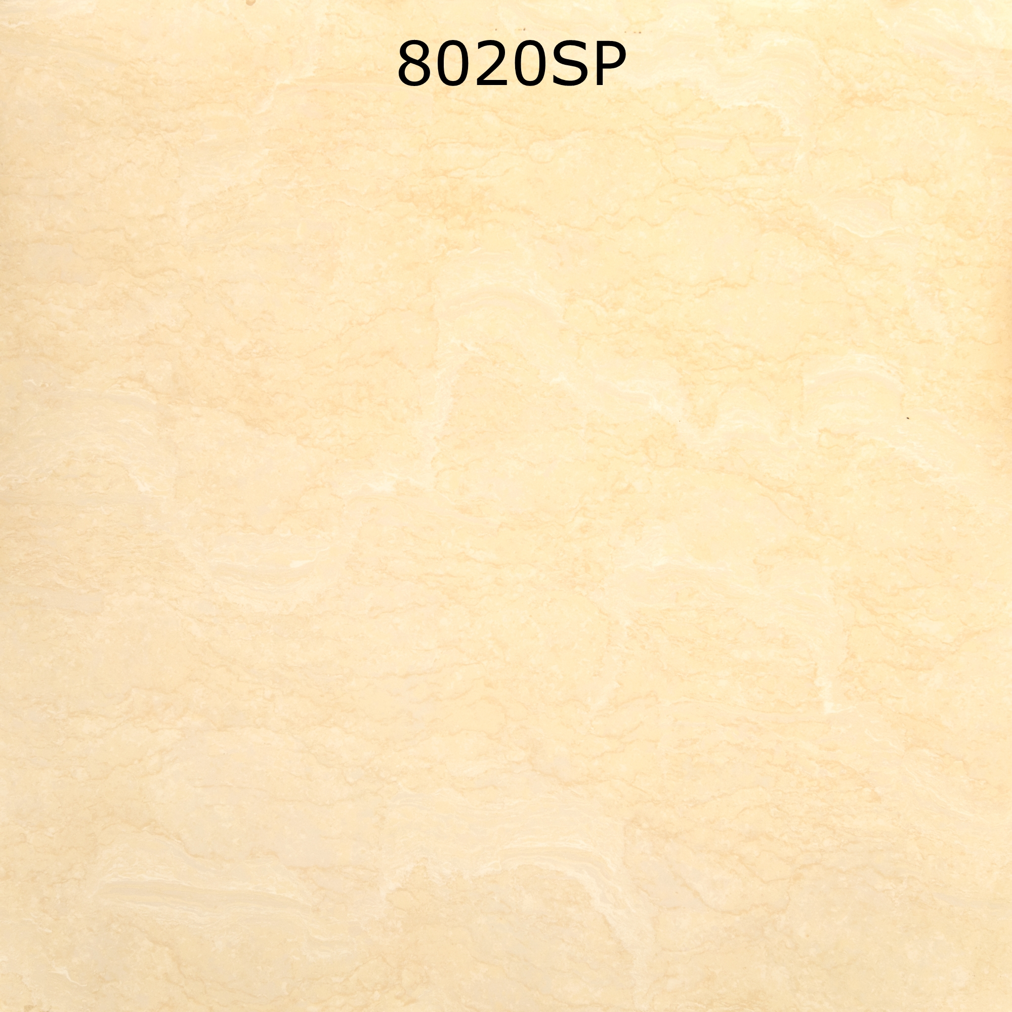 8020SP