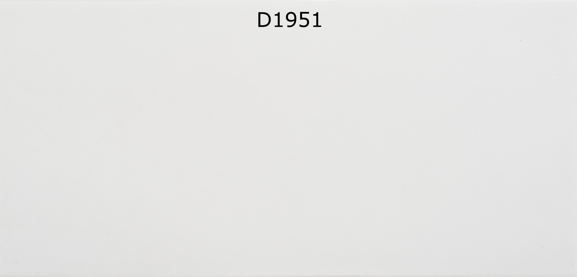 D1951