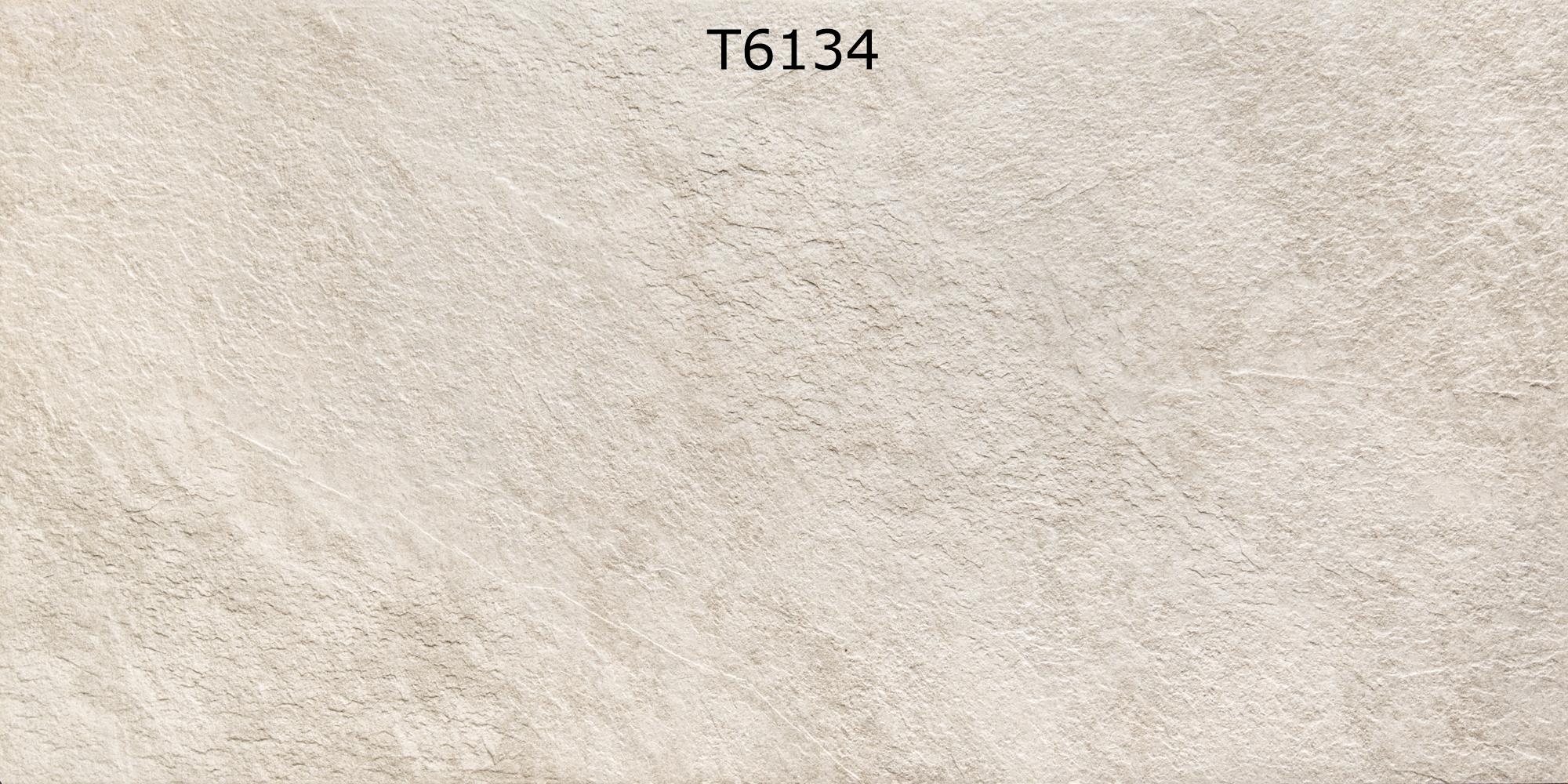 T6134