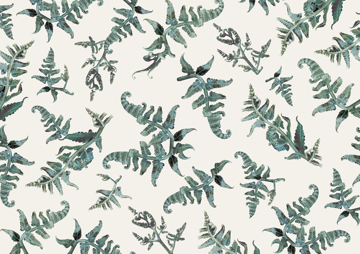 Custom designed pattern featuring the  Pako   or Batanes Fiddlehead Fern leaf.