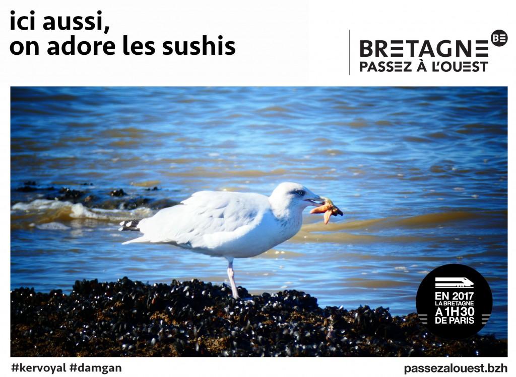 Bretagne5.jpg