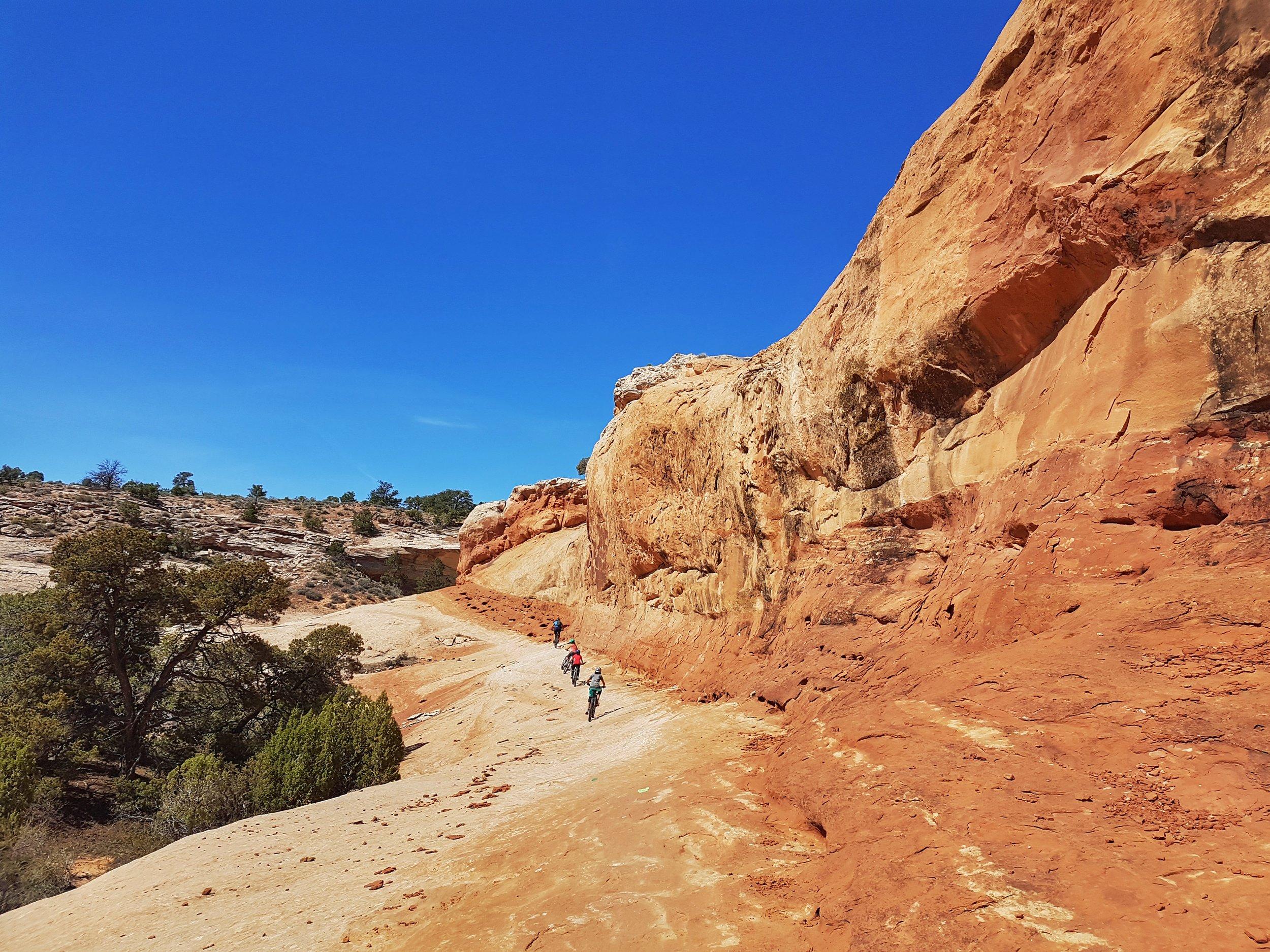 Rocky Tops trail (Navajo Rocks trail system).