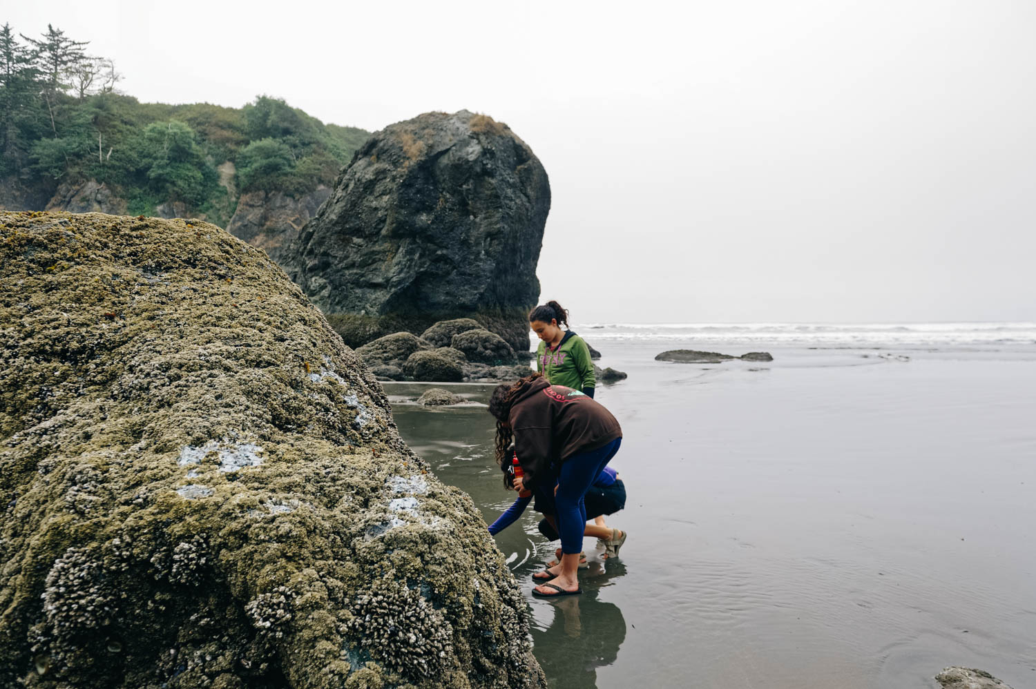 Exploring the tide pools at Ruby Beach