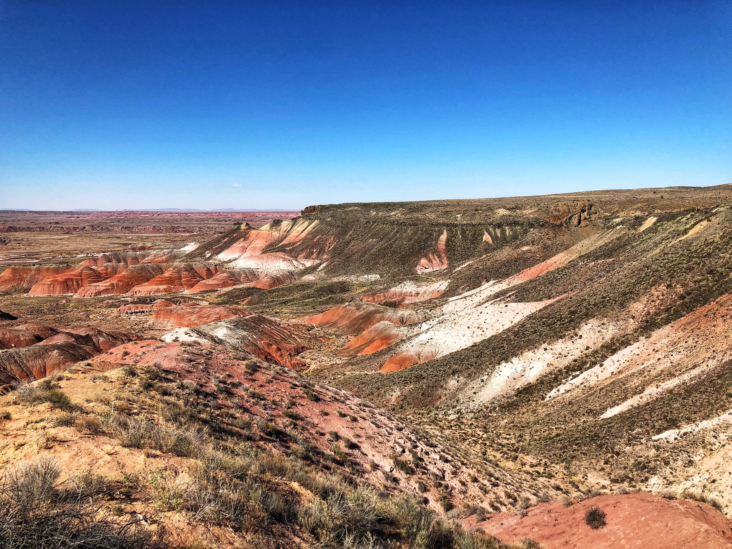 The next day, we went to visit the Petrified Forest National Park. This is the painted desert part. Just gorgeous.