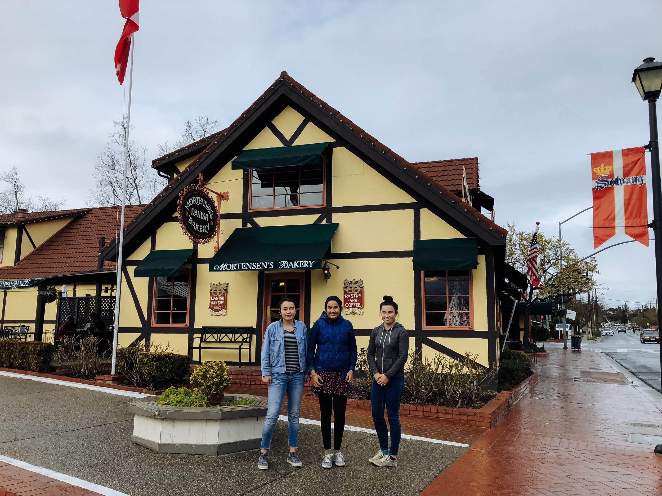 I expected Solvang, the self-proclaimed Danish capital of the USA, to be pretty kitsch, but honestly, old-world Danish architecture and Danish pastries (try the folded crêpe at Mortensen's) make up for the cheap looking souvenir boutiques and 3 (yes, 3!) windmills.