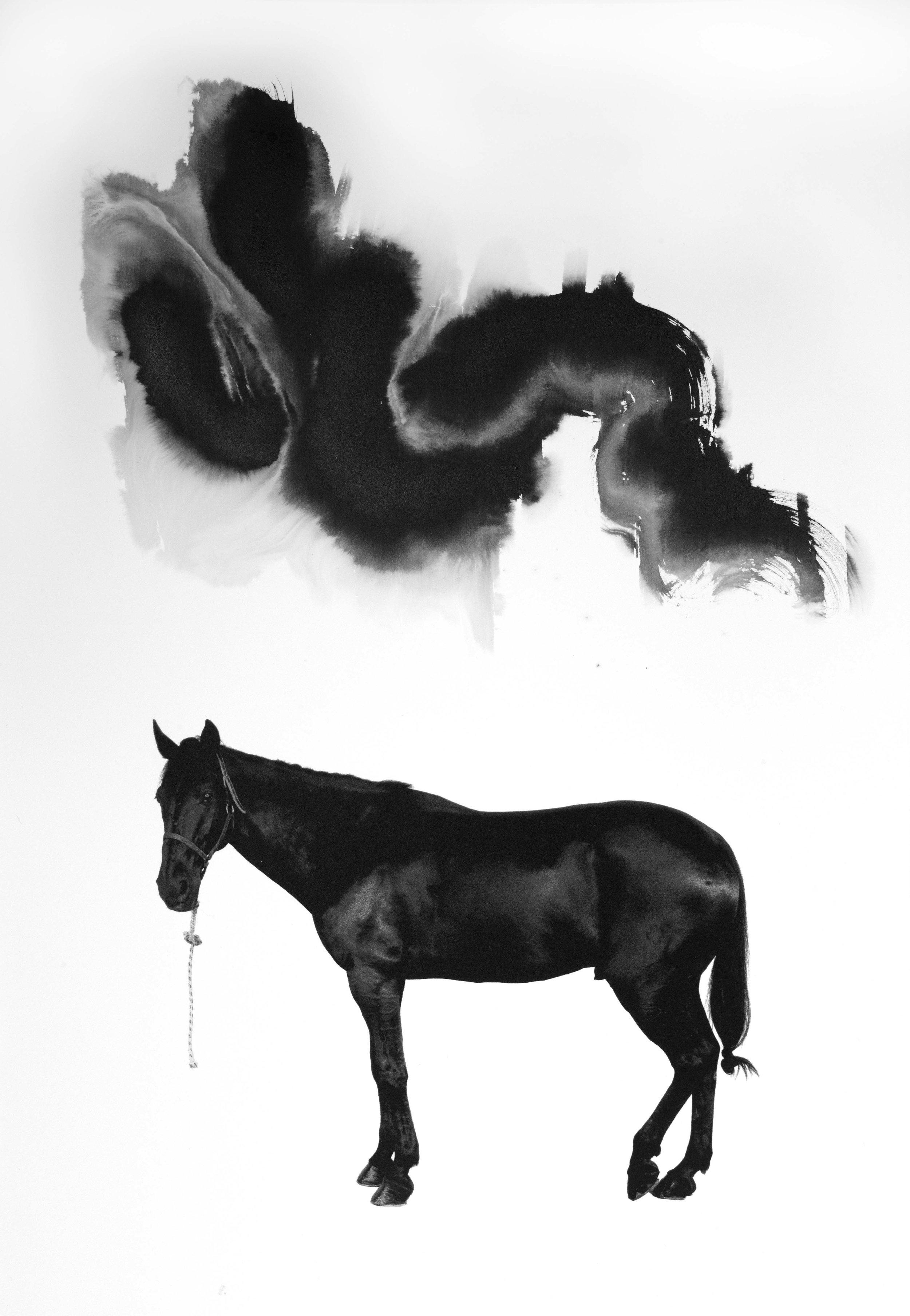 Noir 5 (Sold)