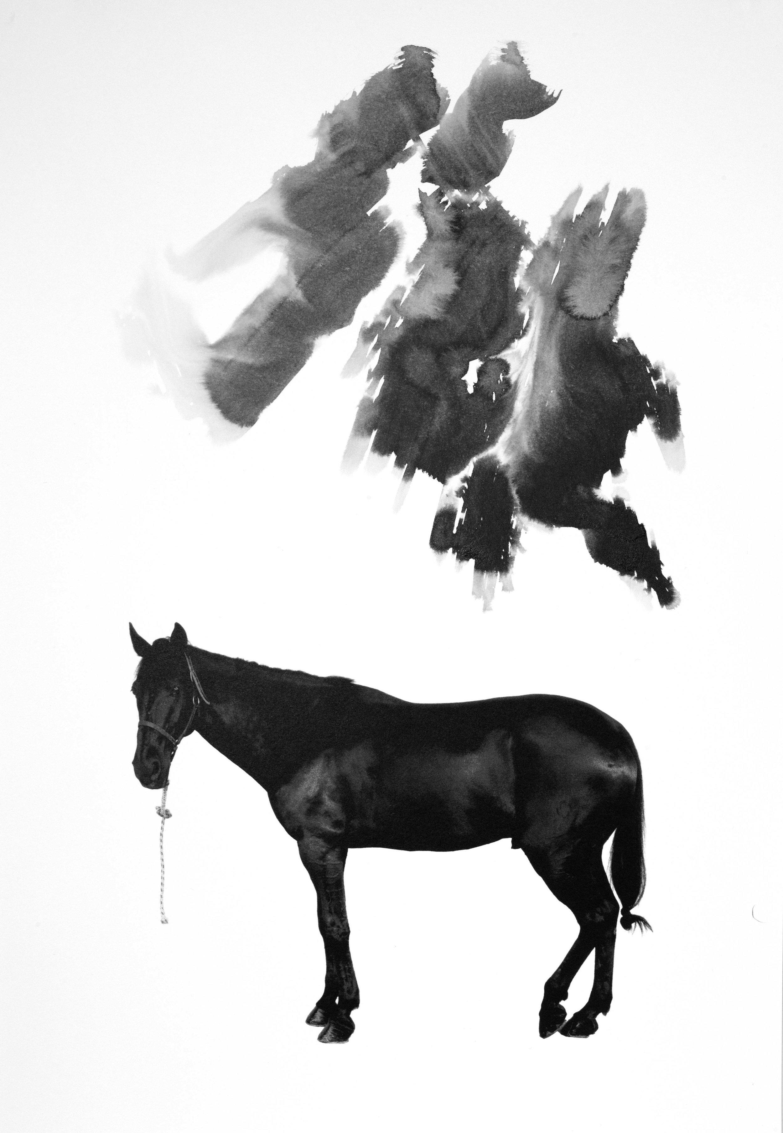 Noir 9
