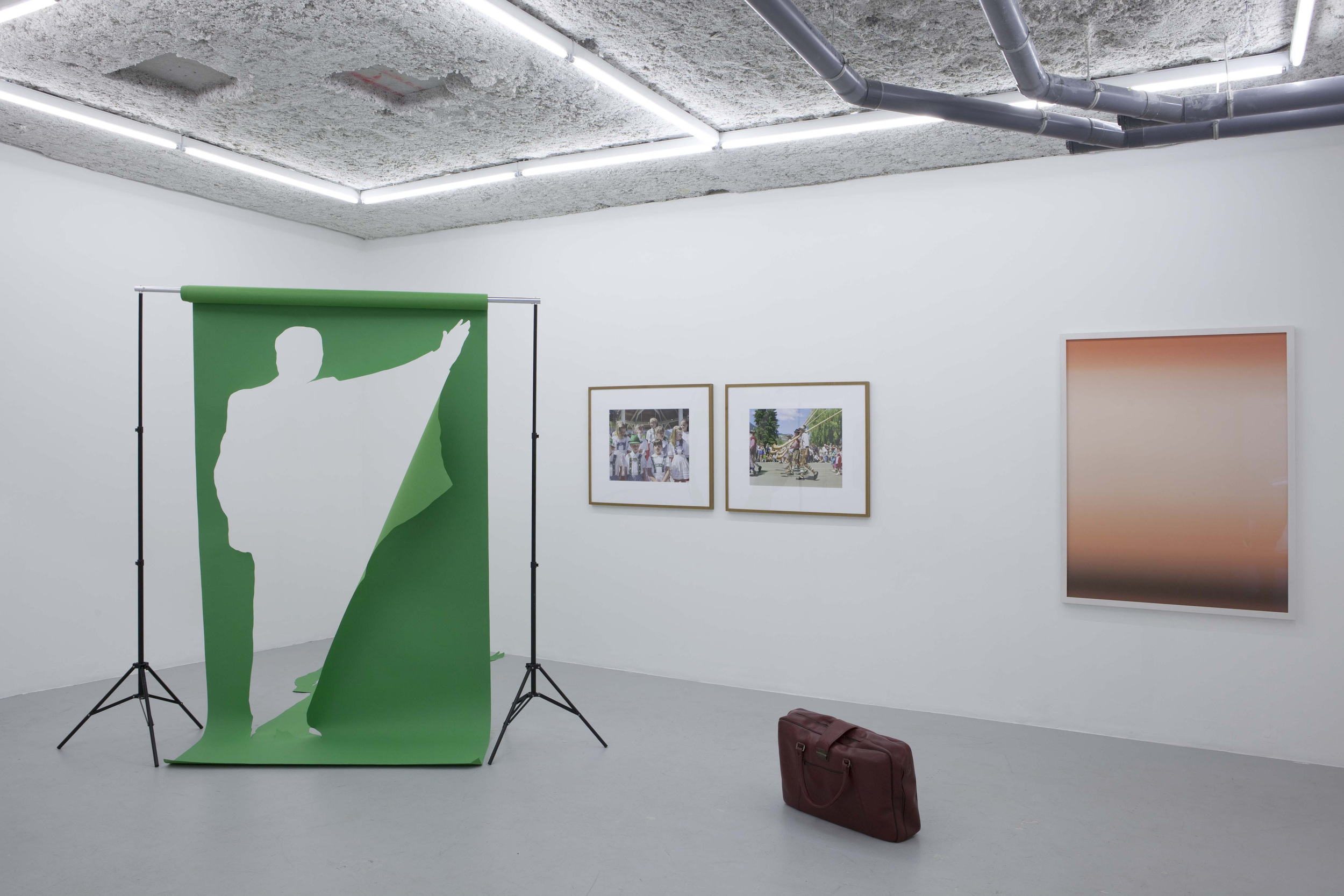 Green Screen in Before and After at Balice Hertling, Paris, 2010.jpg